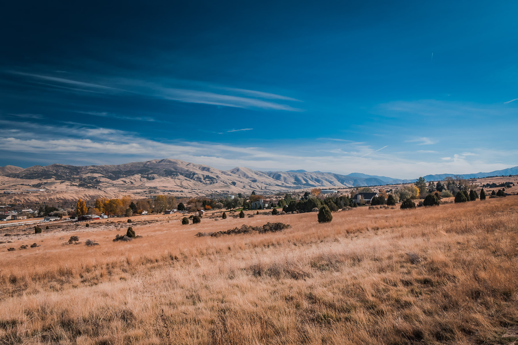 Tall grass grows on a hillside in the outskirts of Pocatello, Idaho.