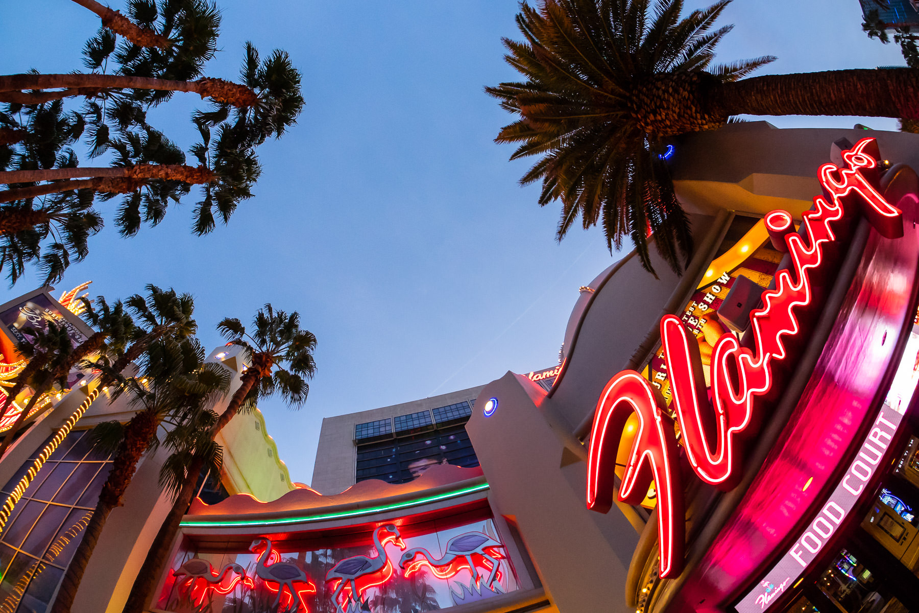 One of the signs at Las Vegas' Flamingo glows as the sun begins to rise on The Strip.