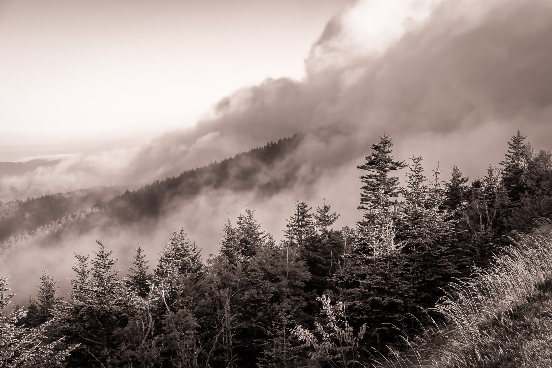 Clouds roll up the side of Clingmans Dome in the Great Smoky Mountains National Park, Tennessee.