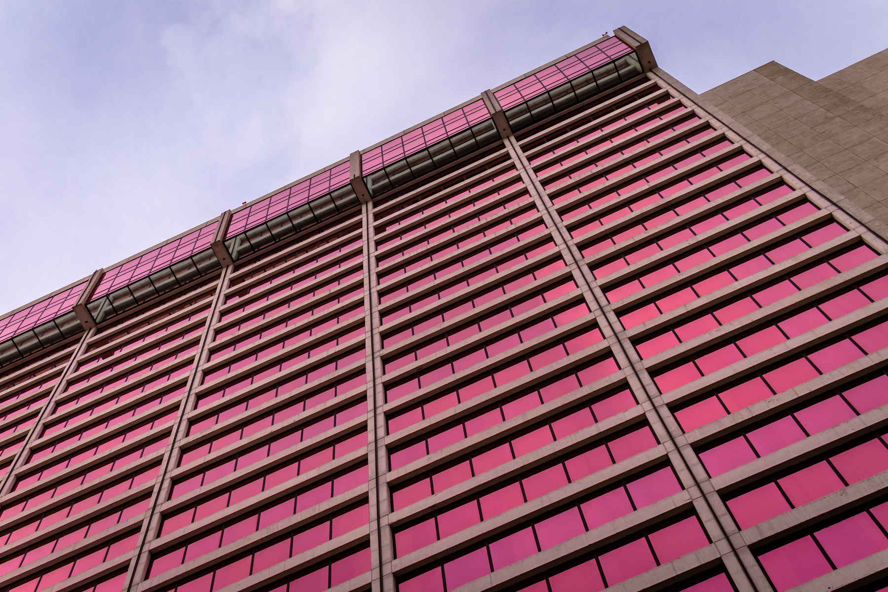 The Flamingo Las Vegas Hotel and Casino rises into the Nevada sky.