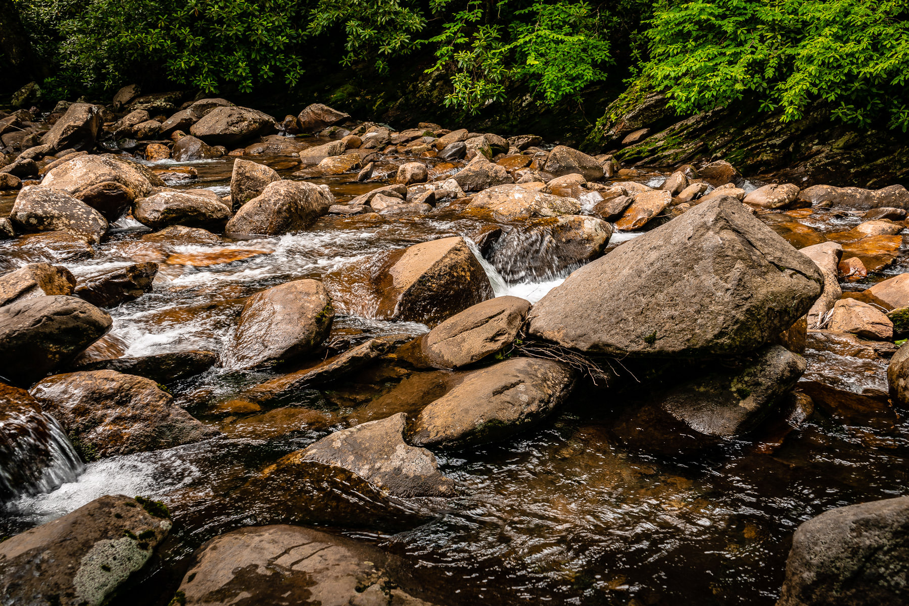 A stream flows over rocks in the Great Smoky Mountains National Park, Tennessee.