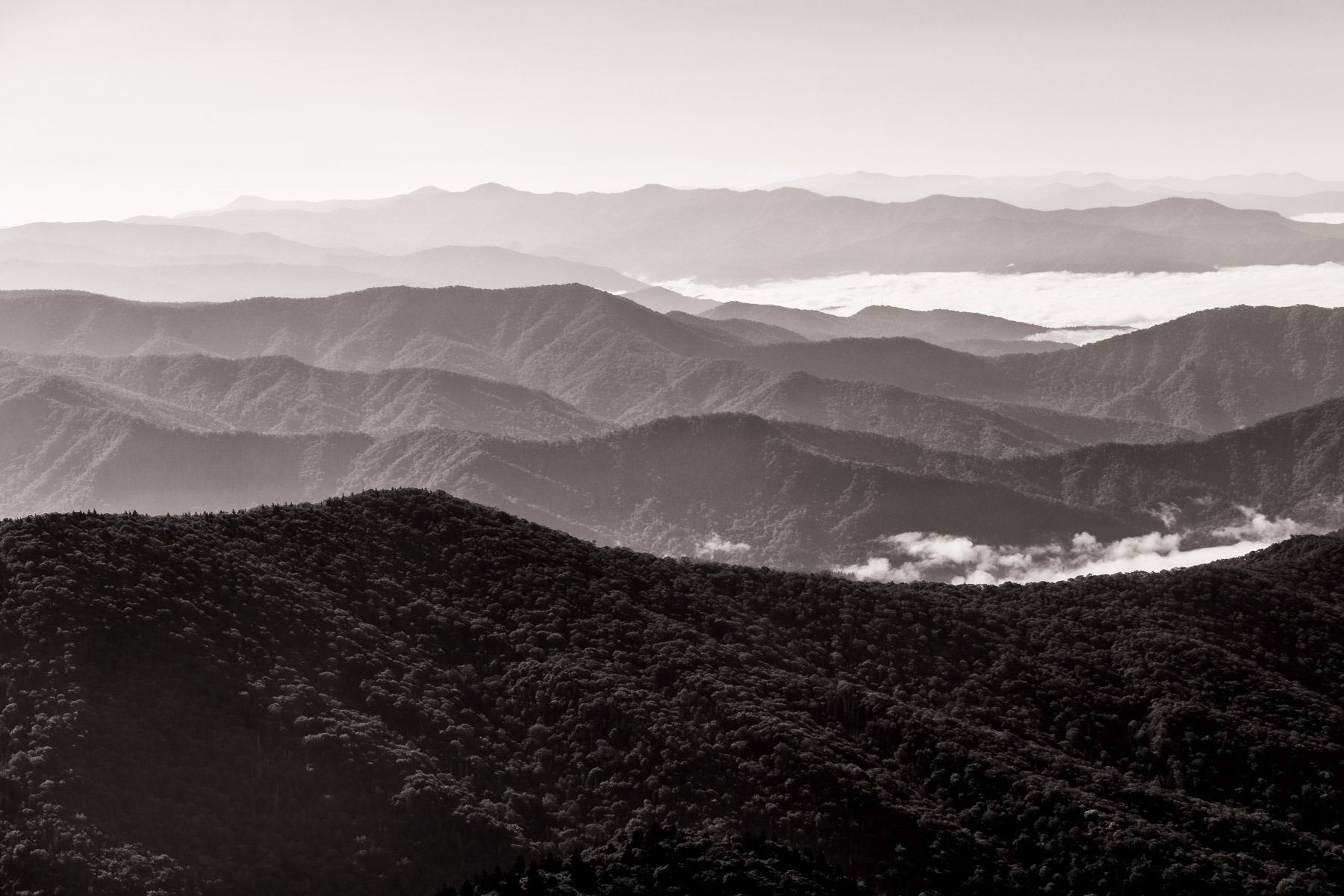 Mountains stretch into the distance as seen from atop Clingmans Dome in the Great Smoky Mountains National Park.