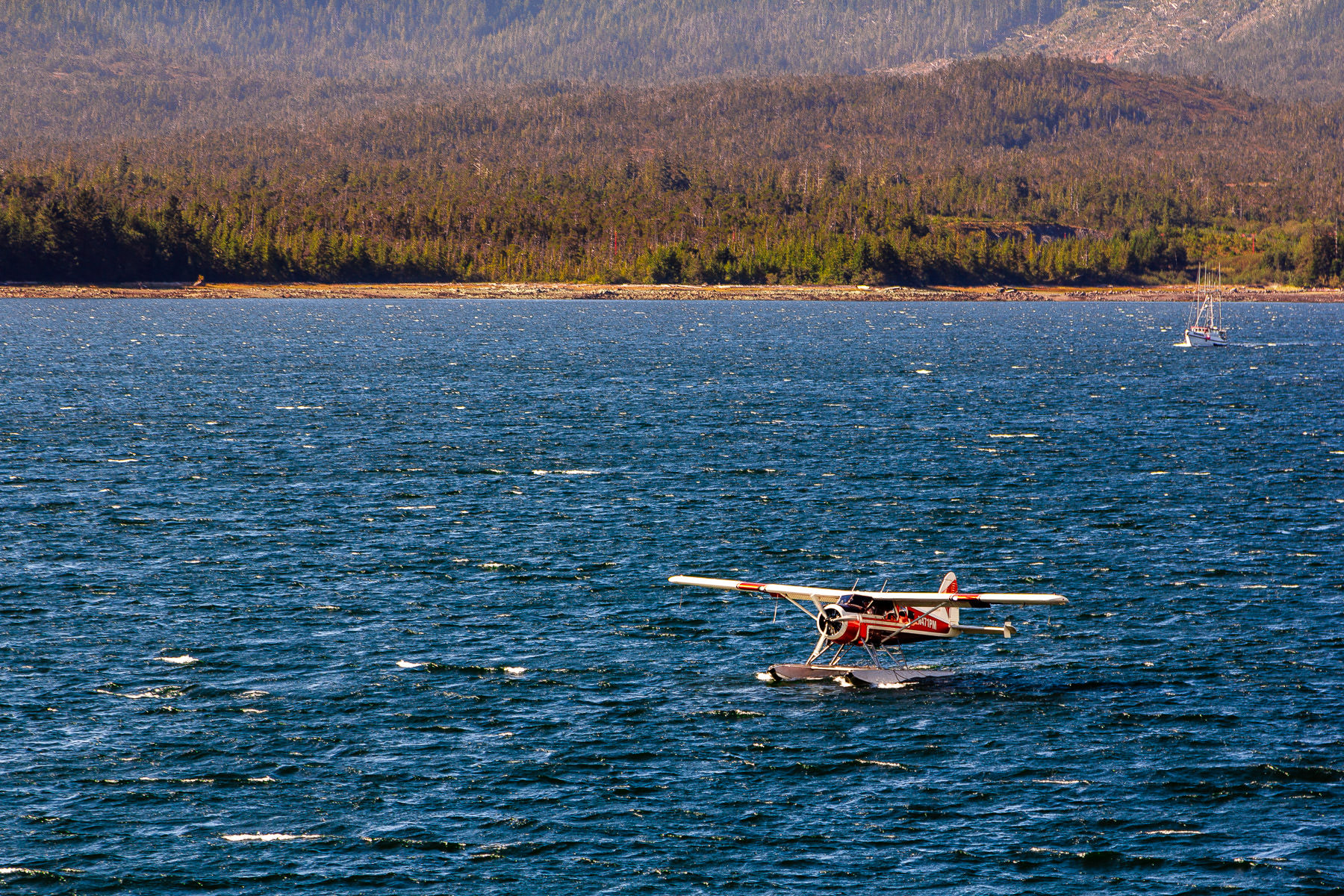 A seaplane prepares to takeoff from the Tongass Narrows in Ketchikan, Alaska.