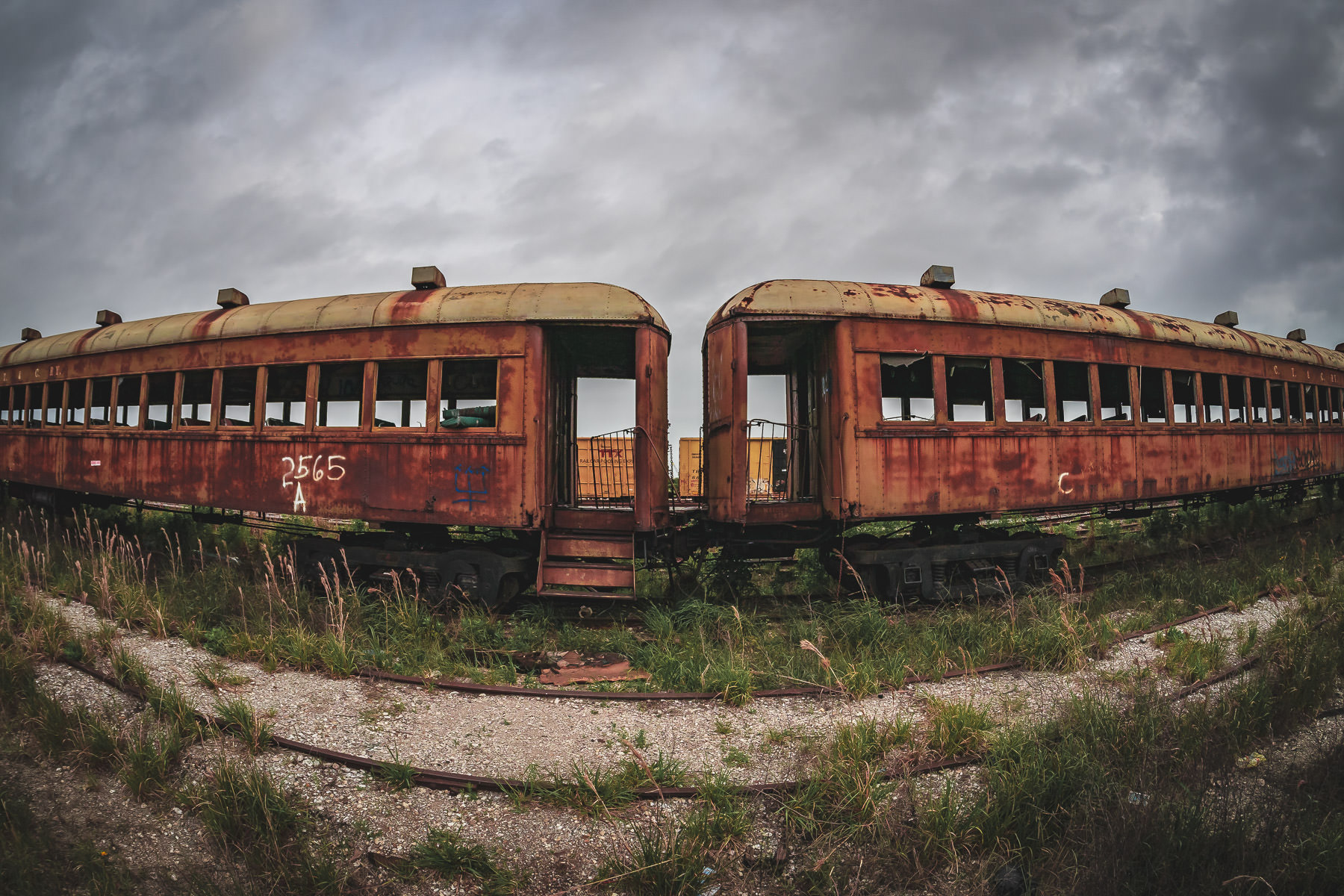 Abandoned railcars, decaying in the Union Pacific rail yard at Galveston, Texas.