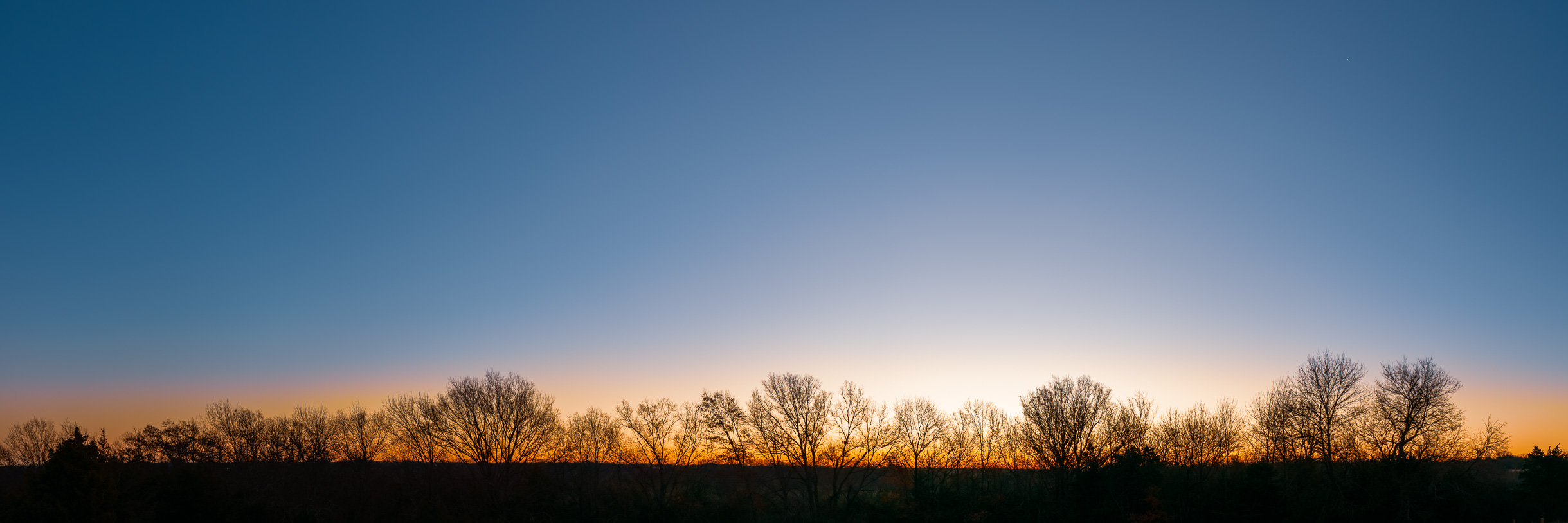 Trees on a ridge near McKinney, Texas, are silhouetted by the early-morning sun.