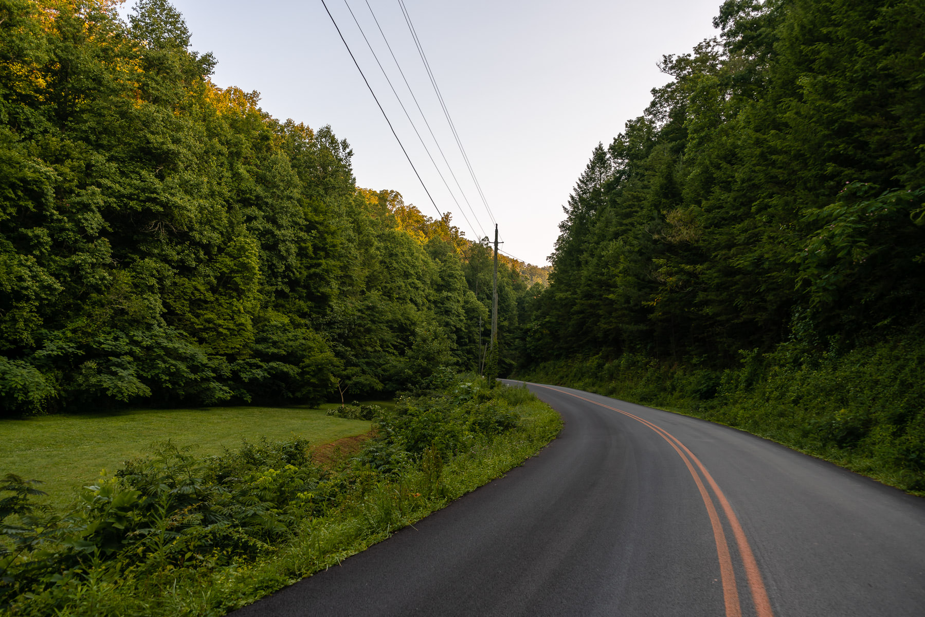 A road carves through the forest near Pigeon Forge, Tennessee.