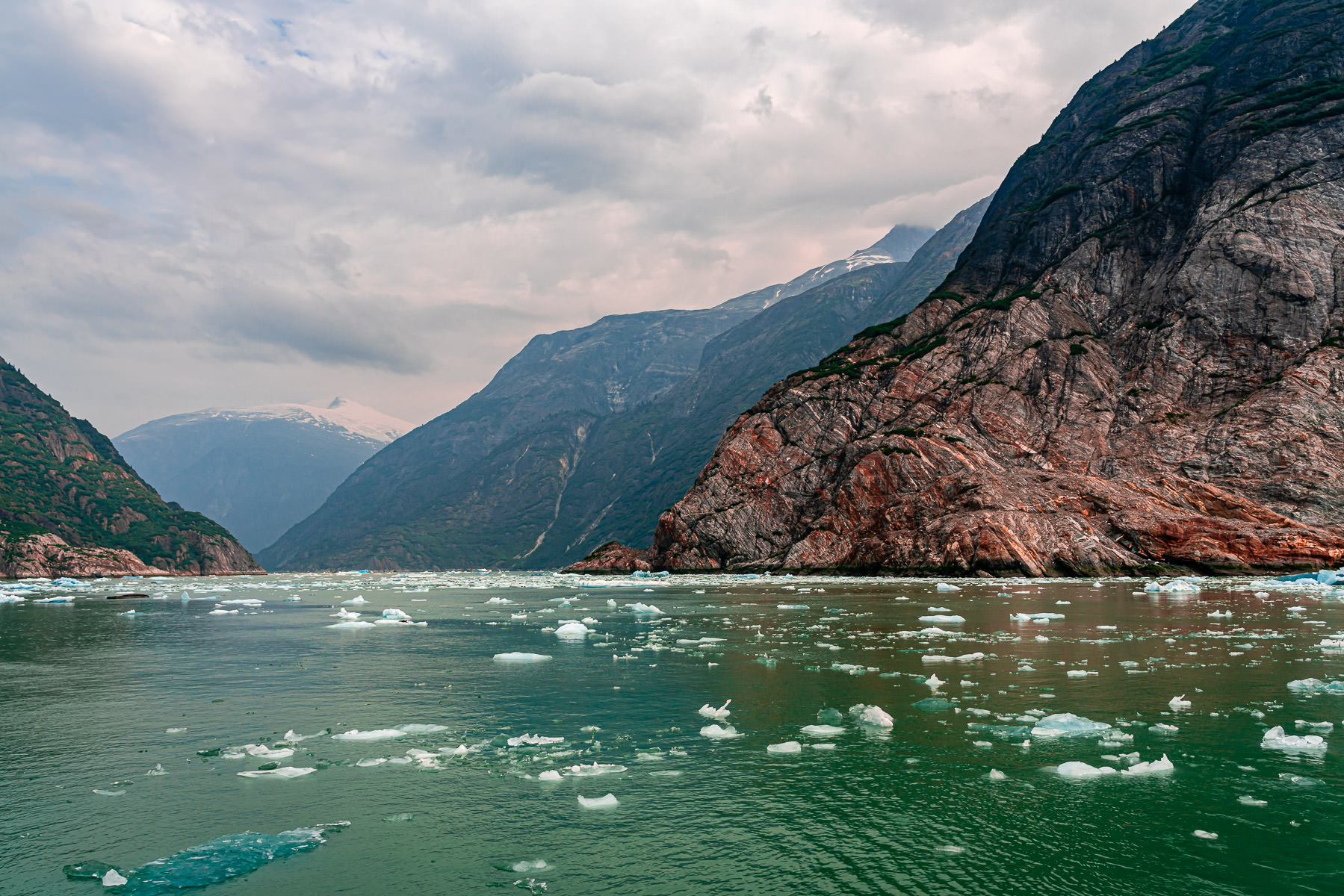 Ice floats among the rocky walls of Alaska's Tracy Arm.