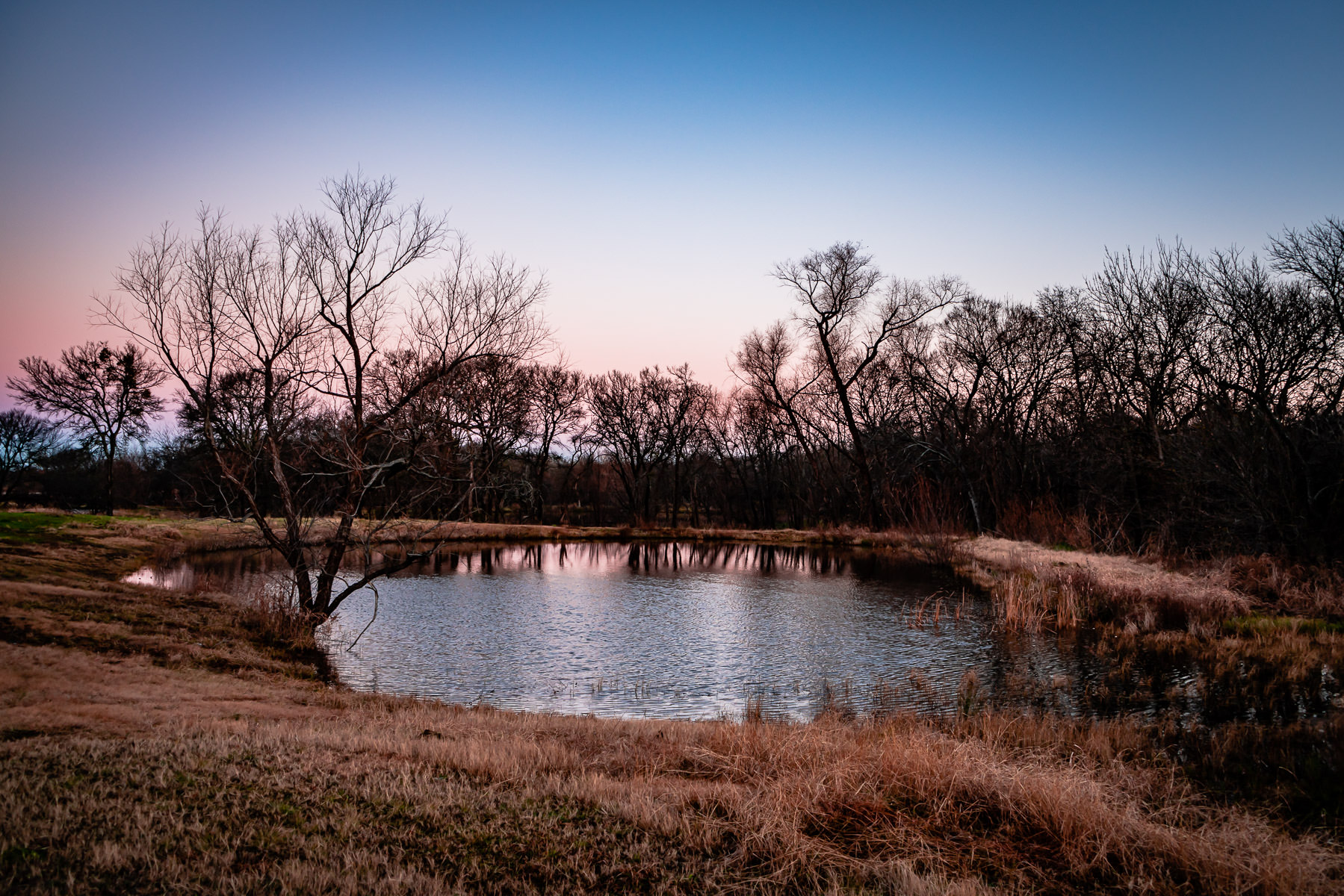 The first light of day on a pond at North Texas' Hagerman National Wildlife Refuge.