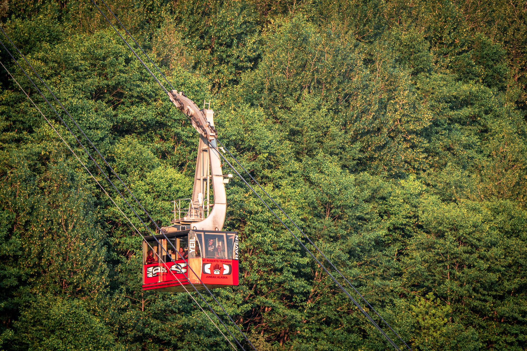 The Mount Roberts Tramway dangles over the forest in Juneau, Alaska.