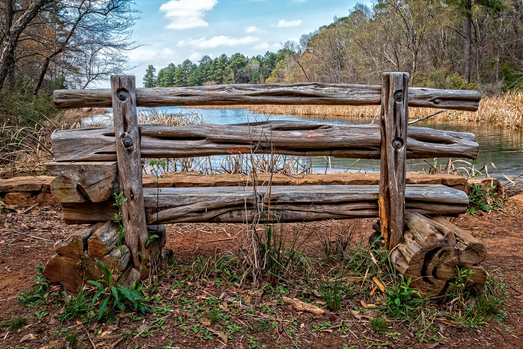 A bench provides a lakeside view at Texas' Tyler State Park.
