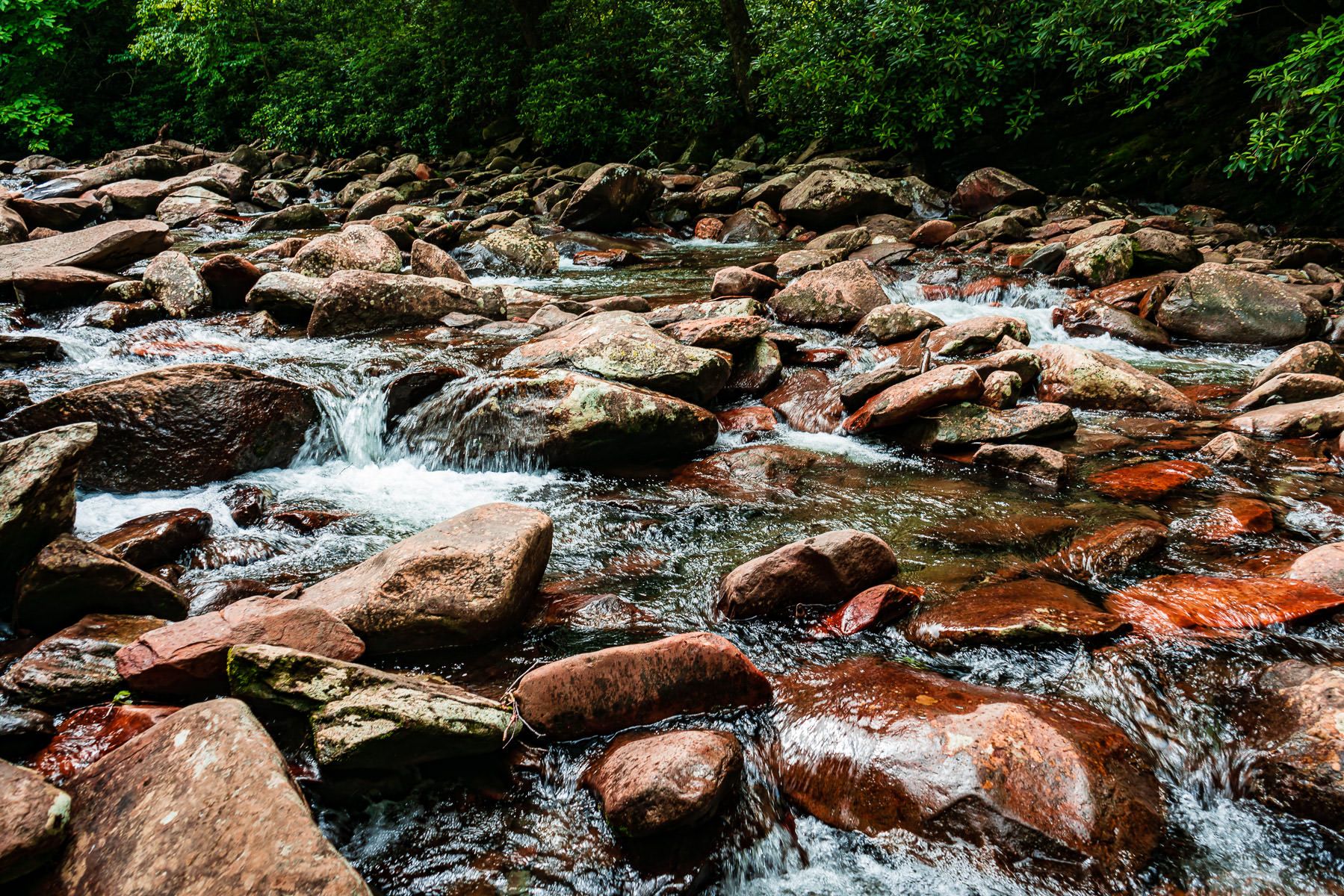 A rocky stream in the Great Smoky Mountains National Park, Tennessee.