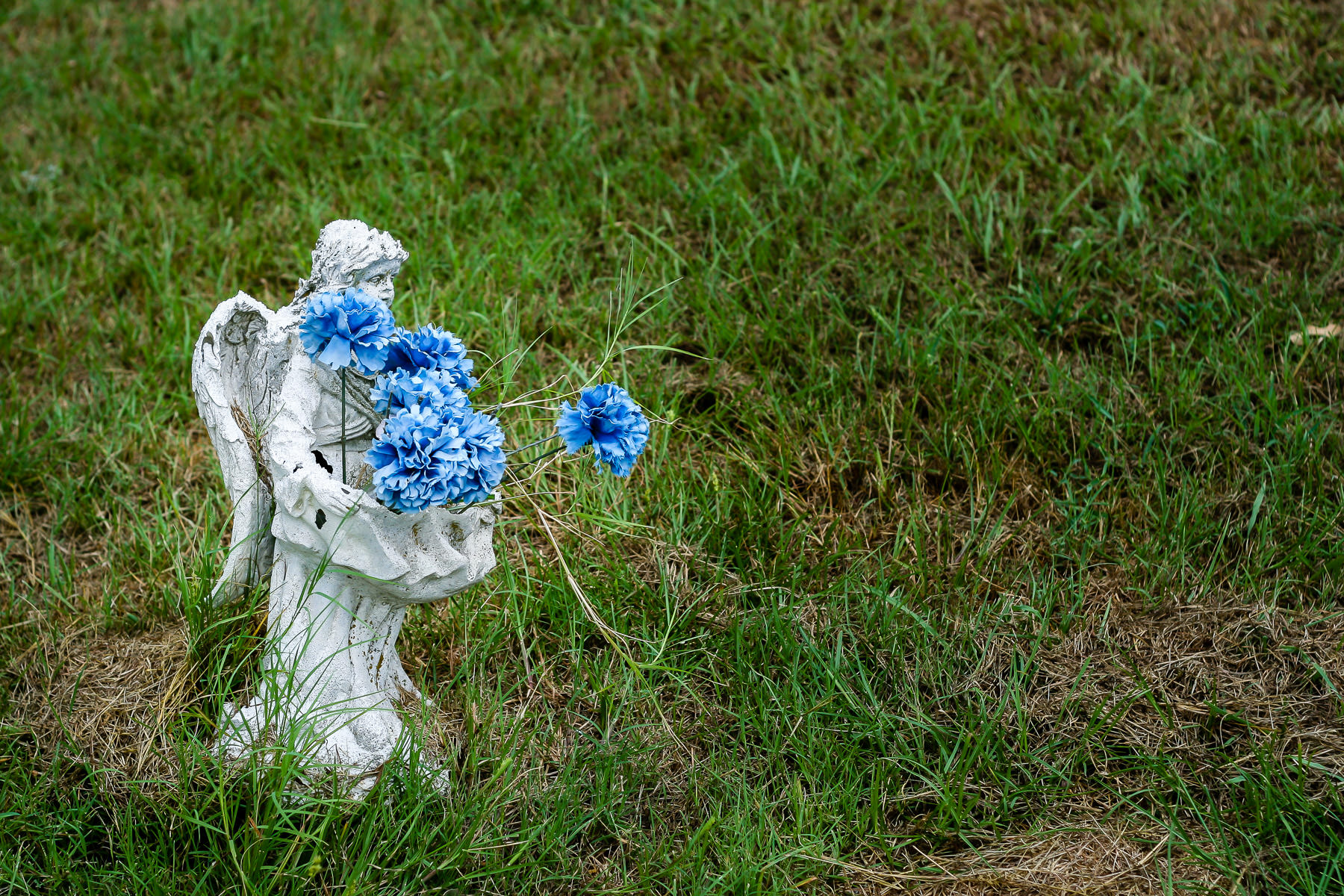 A small angel statue holds flowers at Minters Chapel Cemetery on the property of DFW International Airport, Texas.
