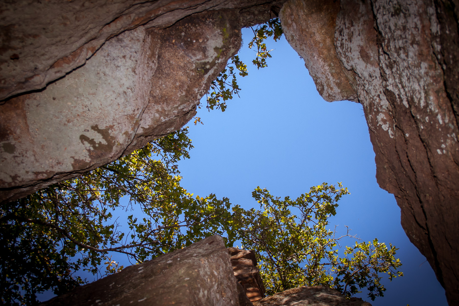 The sky and trees rise beyond a rock crevice at Lake Mineral Wells State Park in Texas.