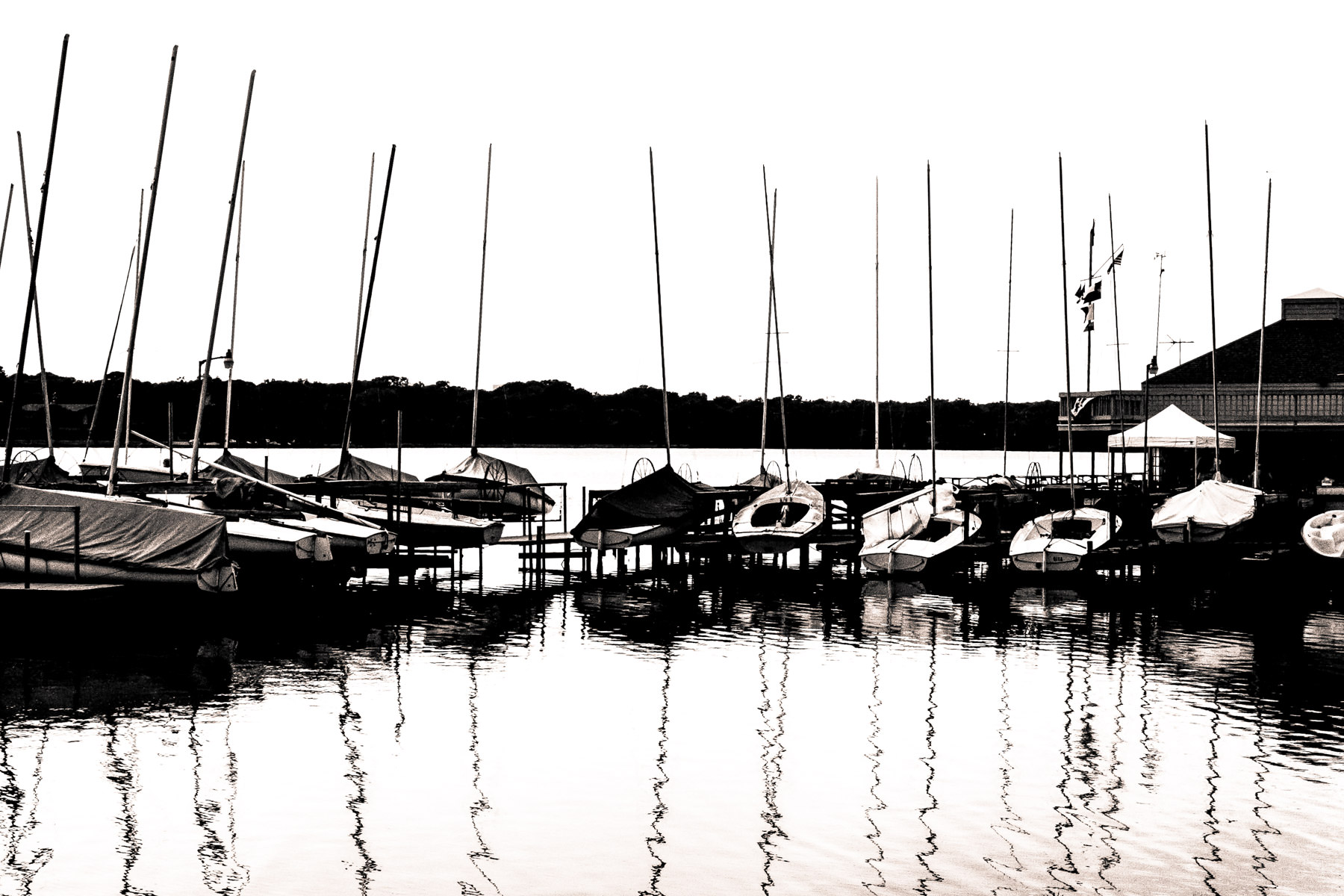 Sail boats waiting to be put to sea (or lake, in this case) at White Rock Lake in Dallas.