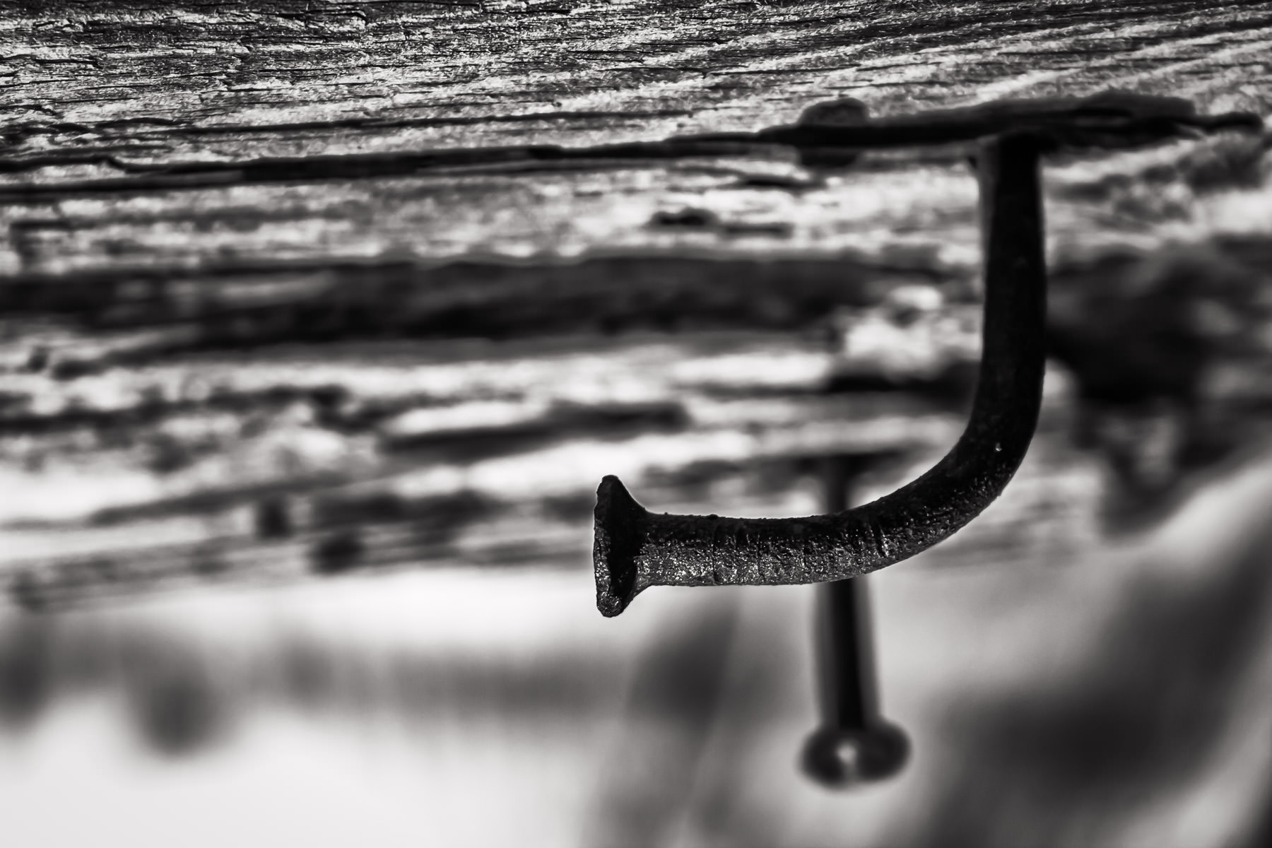 A rusted, bent nail in a dilapidated structure at Allen Heritage Village in Allen, Texas.