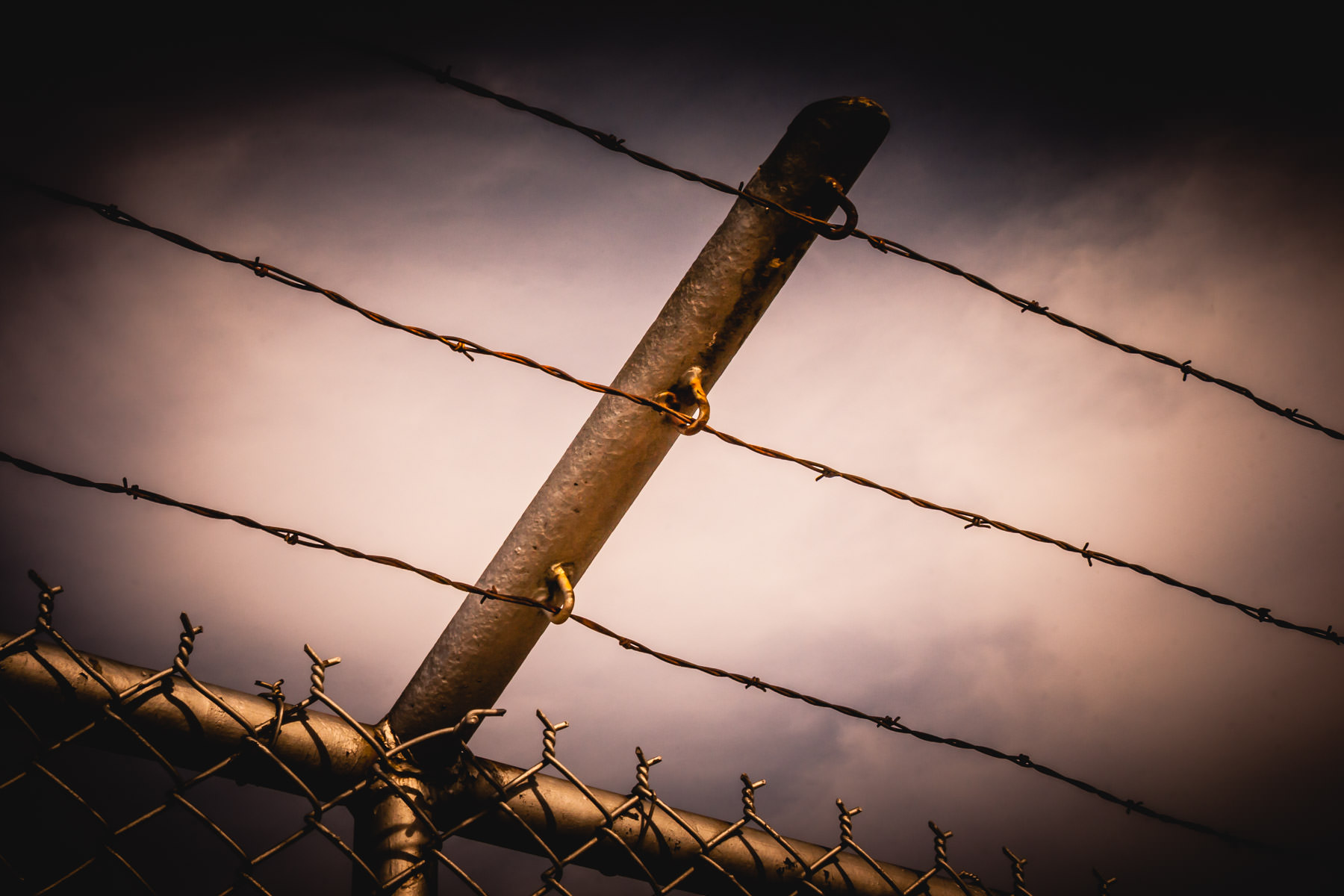 Barbed wire atop a fence near Lake Texoma, Texas.