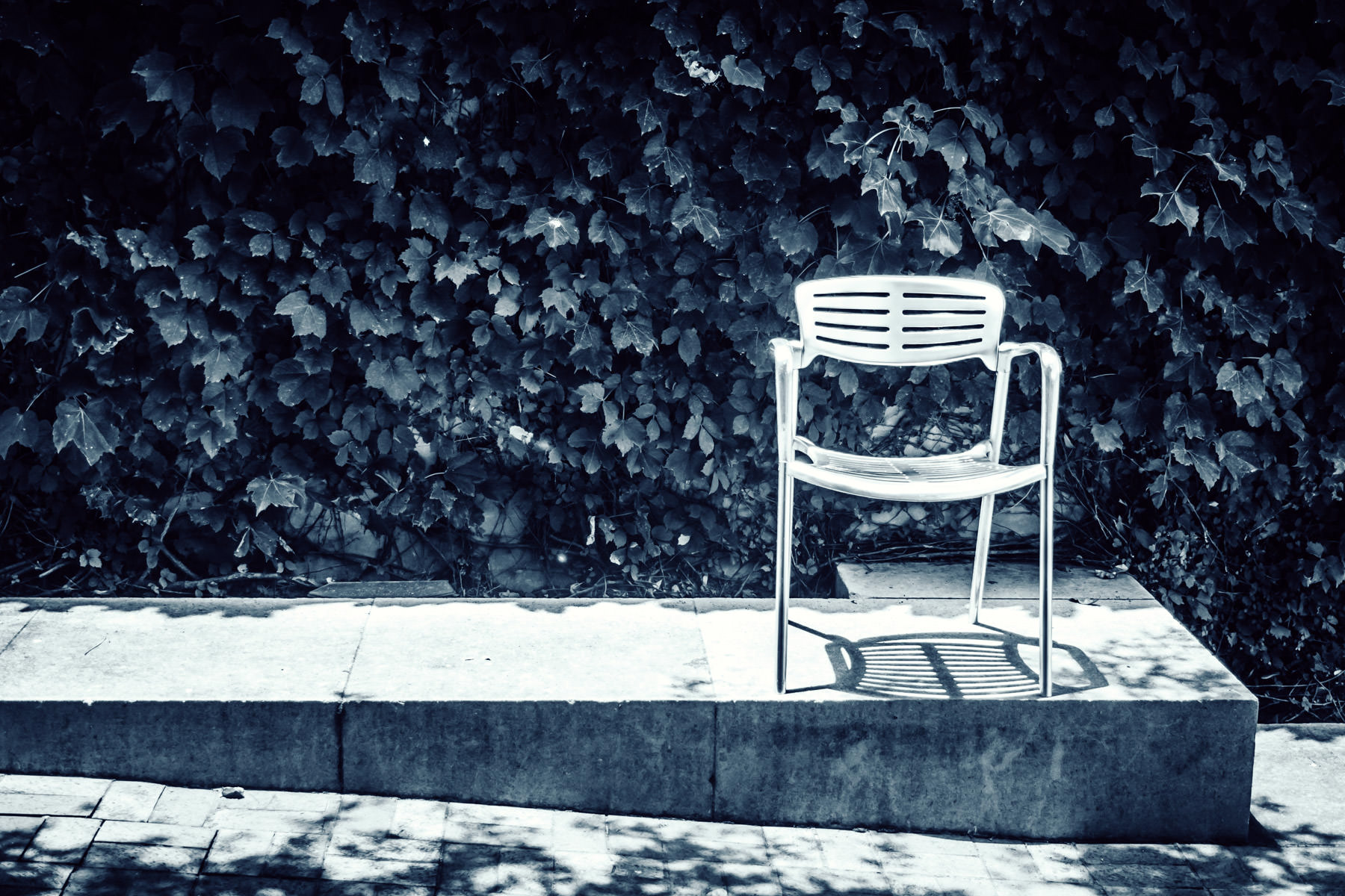 A solitary chair sits in the courtyard of the Nasher Sculpture Center in the Dallas Arts District.