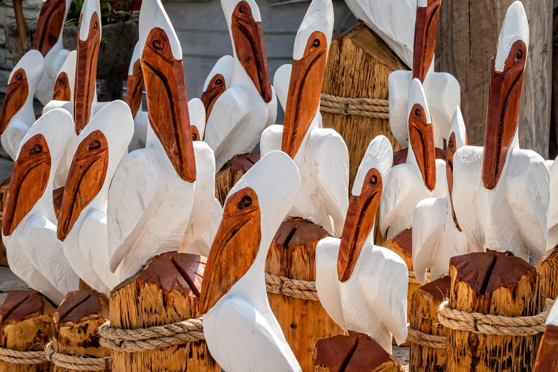 Carved wood pelicans at a souvenir/gift shop in Port Isabel, Texas.