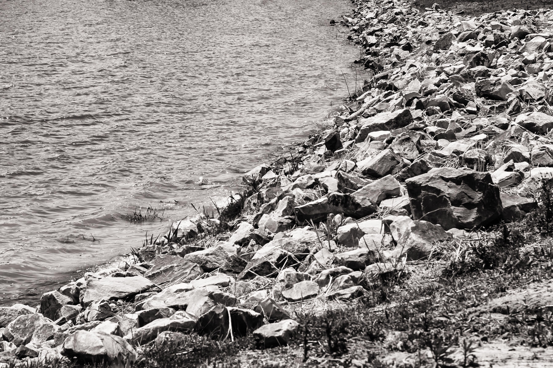 Rocks on the shore of the park's lake at Bonham State Park, Texas.