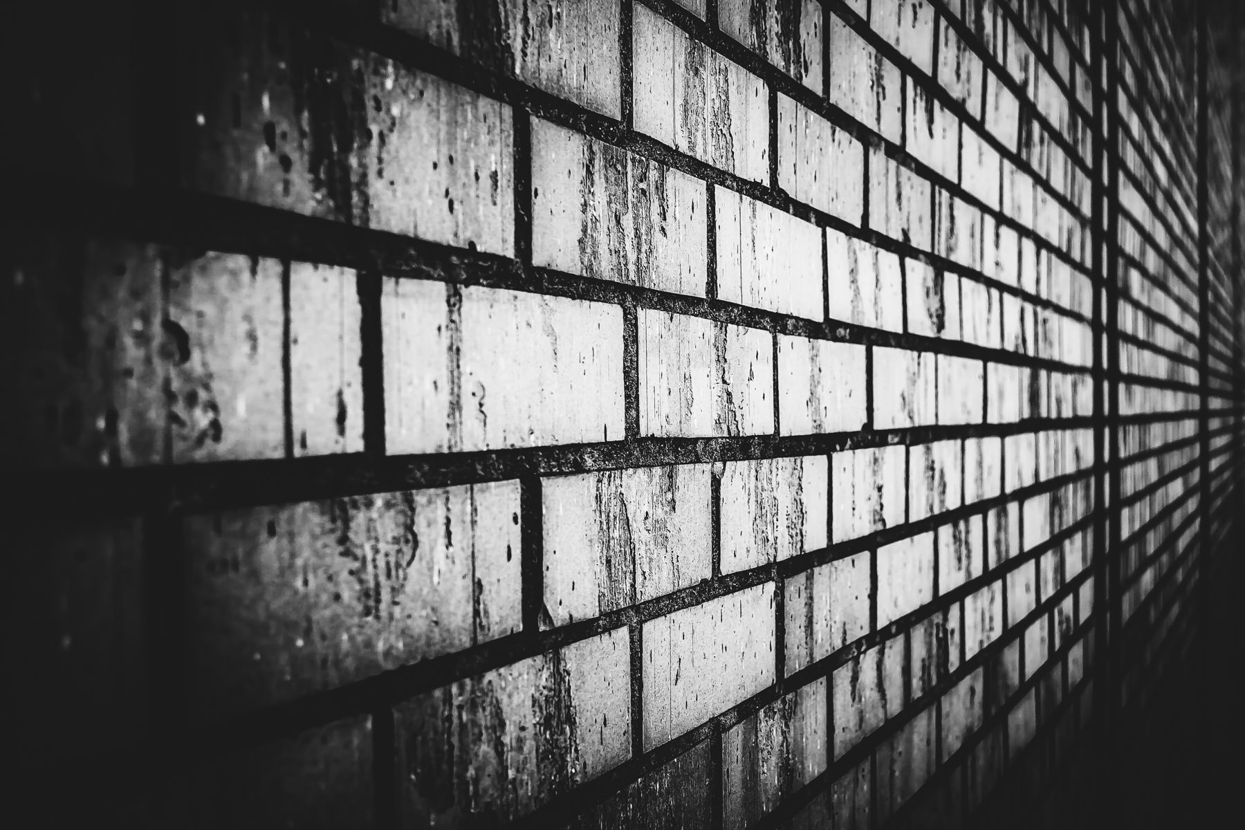 A brick wall in Overton, Texas.