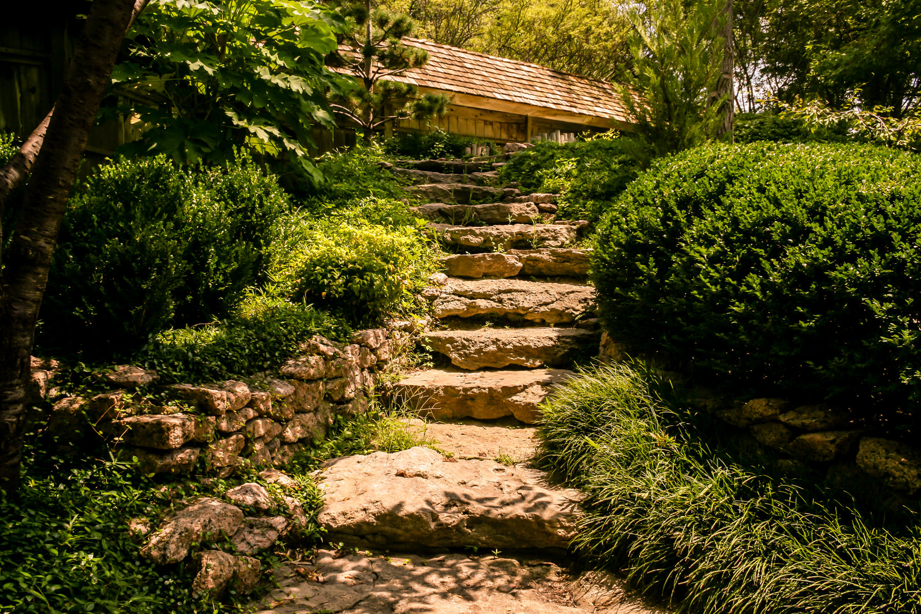 A stone staircase leads up to a building at the Fort Worth Botanic Gardens.
