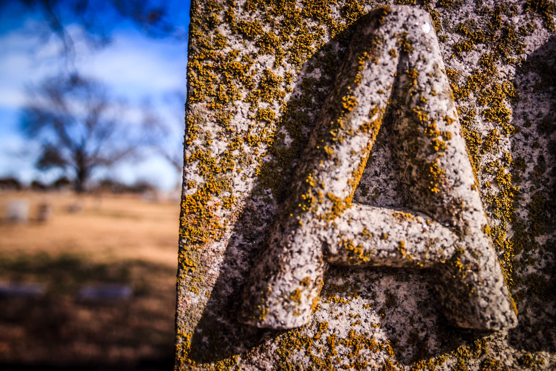 Moss grows on a headstone in McKinney, Texas' historic Pecan Grove Cemetery.