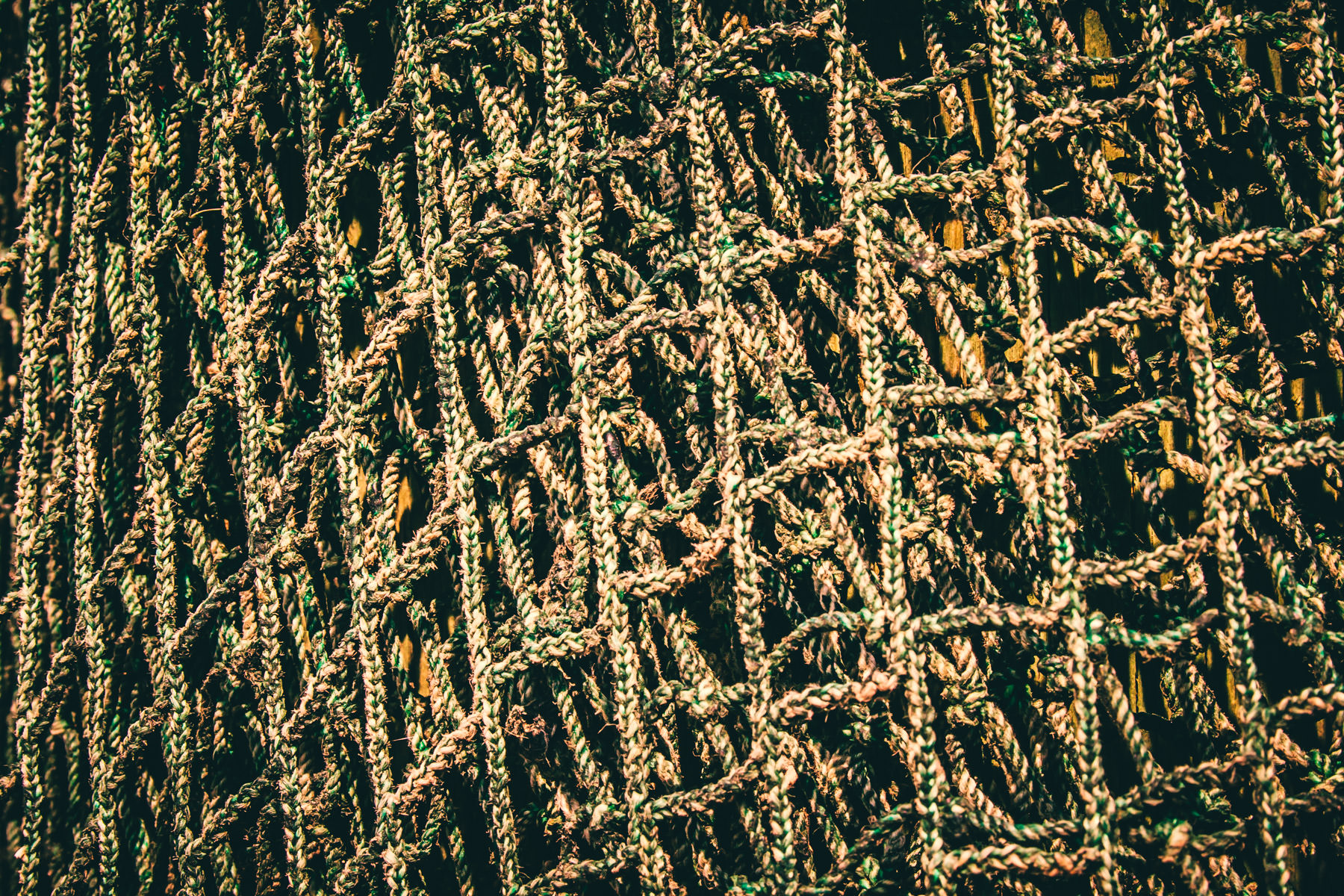 Detail of a fishing net in Port Isabel, Texas.