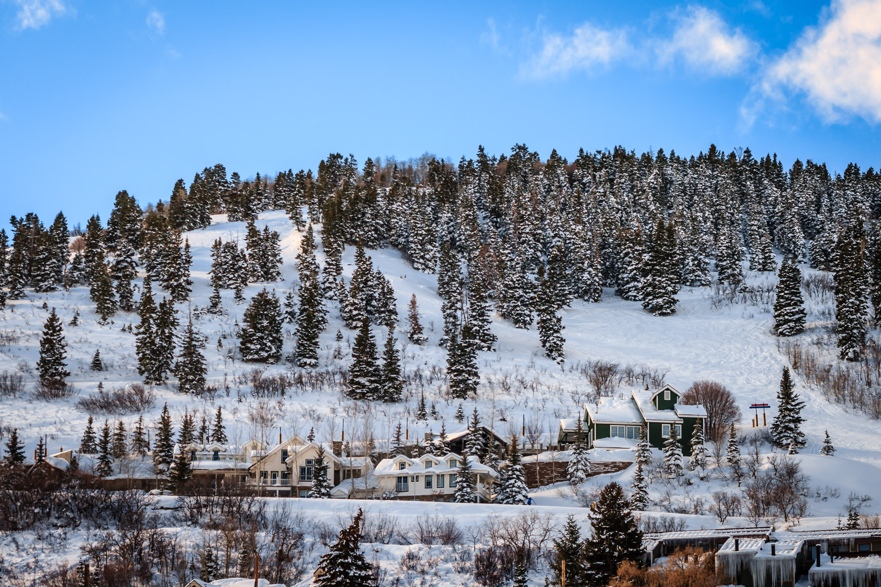 Snow-covered trees and houses in Park City, Utah.