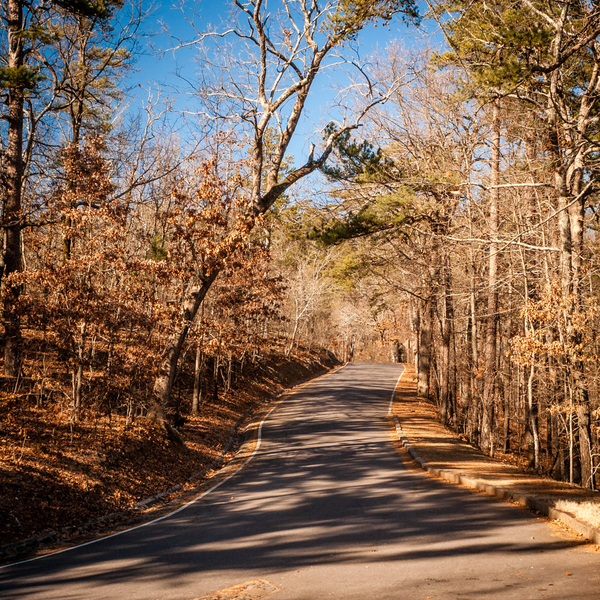 A road winds through the trees atop a hill near Hot Springs, Arkansas.