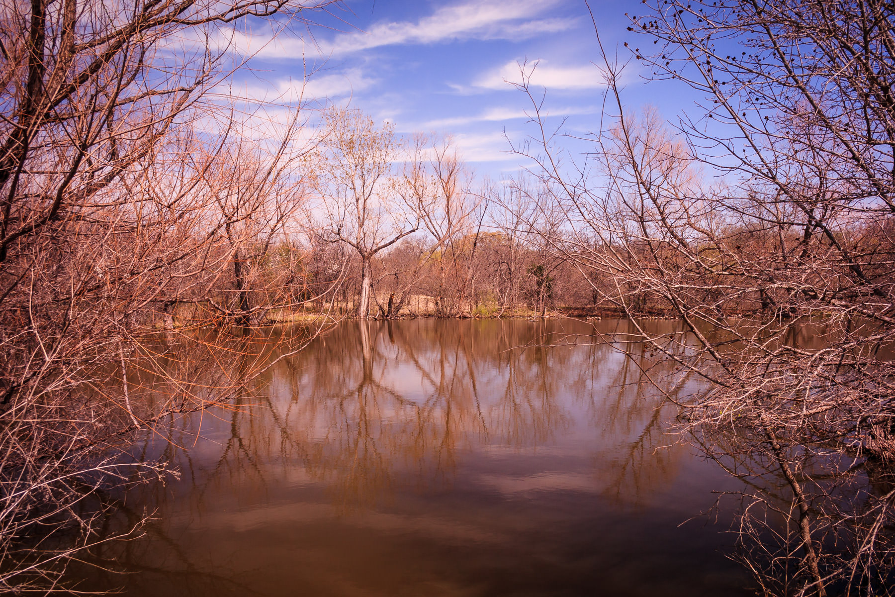 A pond at Plano, Texas' Arbor Hills Nature Preserve.