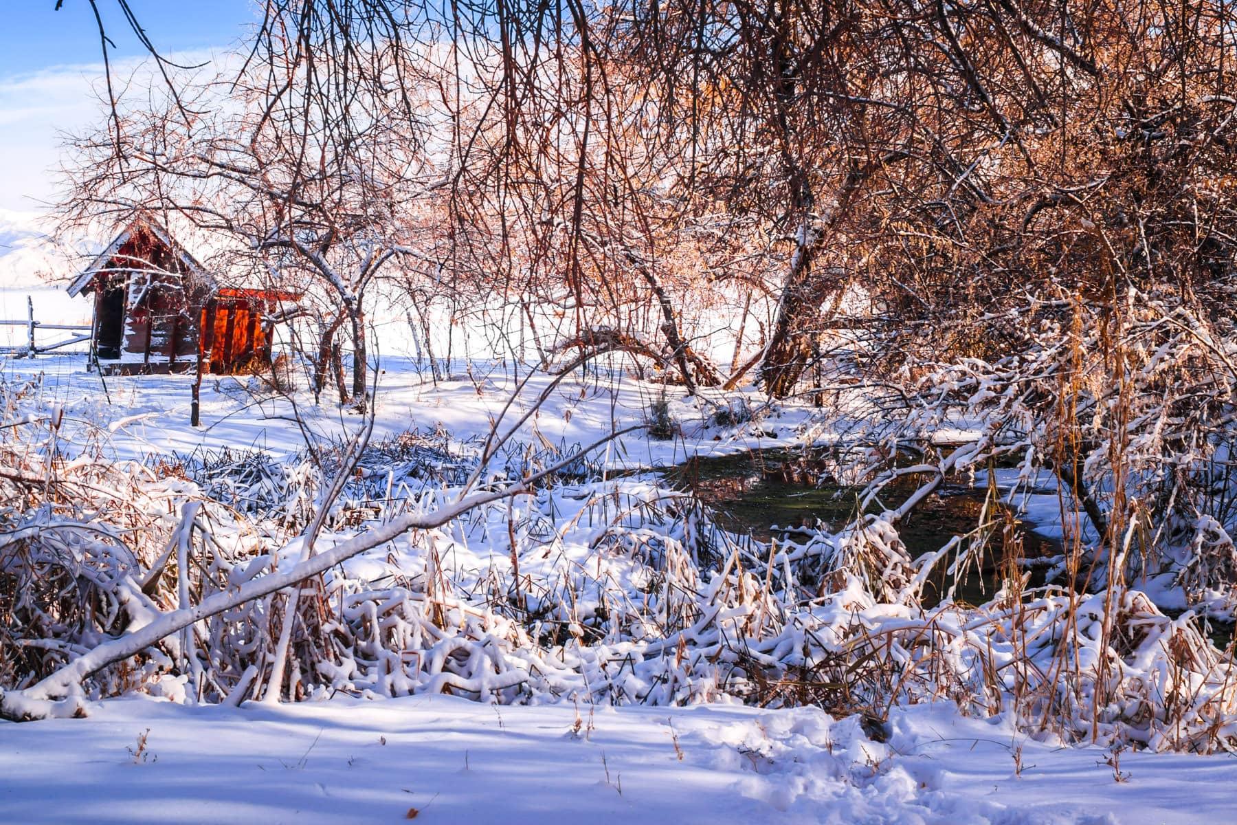 A decrepit shack at Antelope Island State Park, Utah.