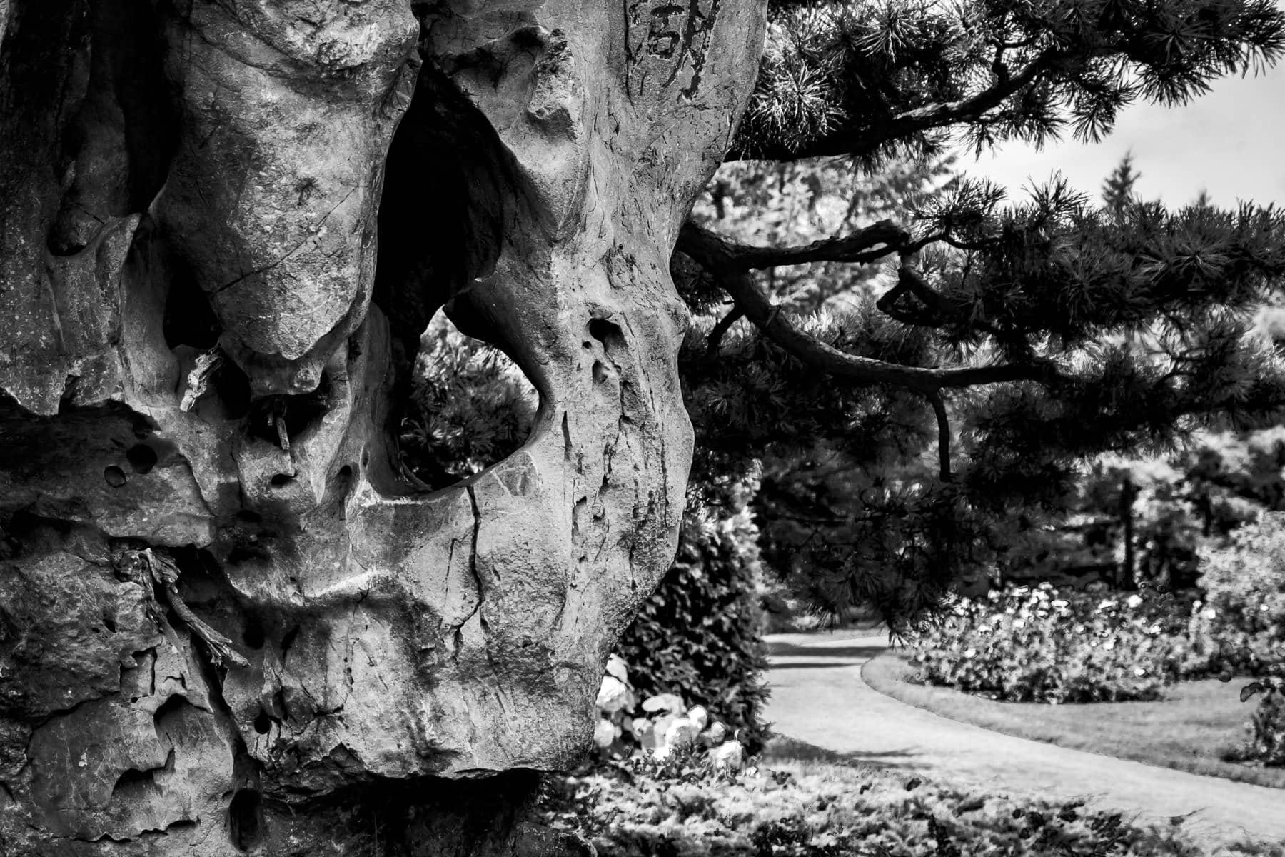 Unique, hole-laden rocks in the Jardin de Chine at Montréal's Jardin Botanique.