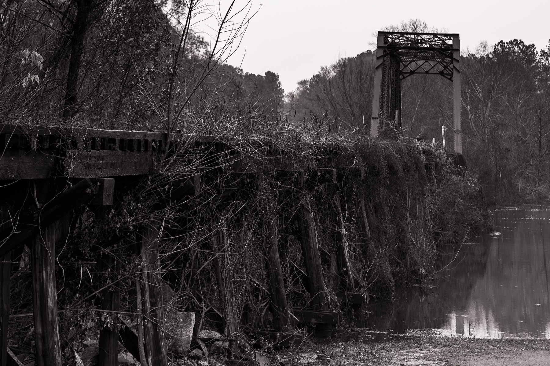 A railroad bridge is overgrown with brush in Jefferson, Texas.