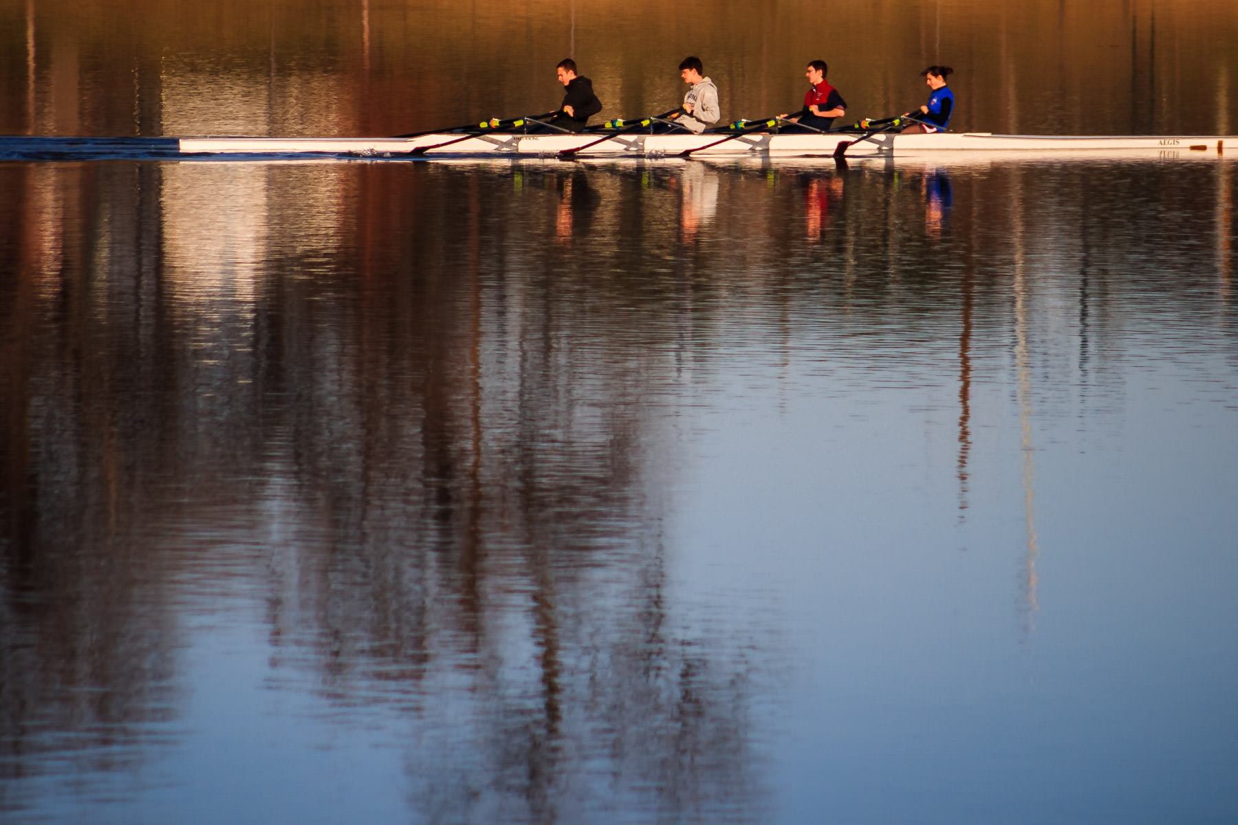 Rowers sculling at Bachman Lake Park, Dallas.