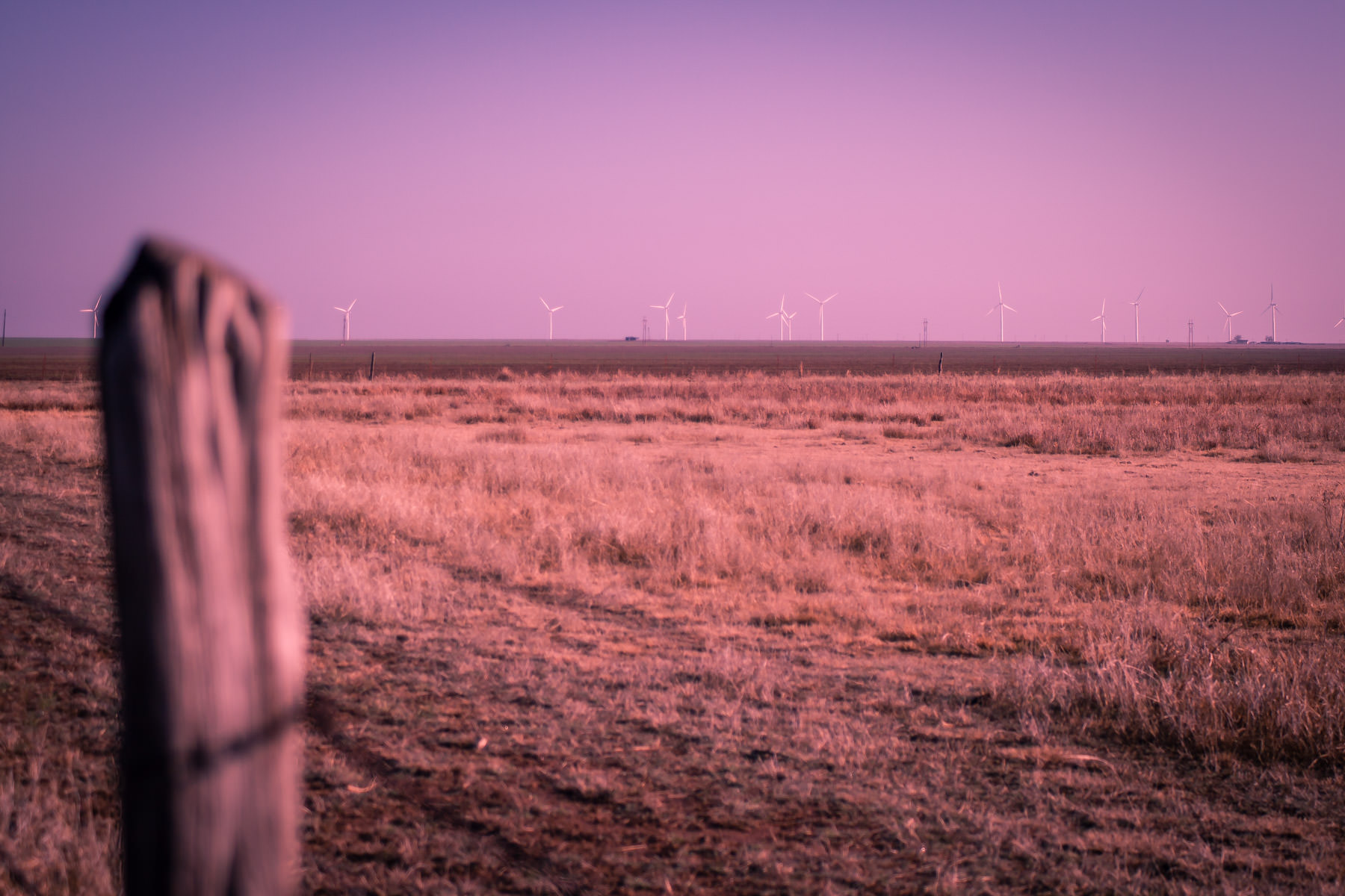 Giant wind generators dot the horizon as the sun rises on the Texas Panhandle.