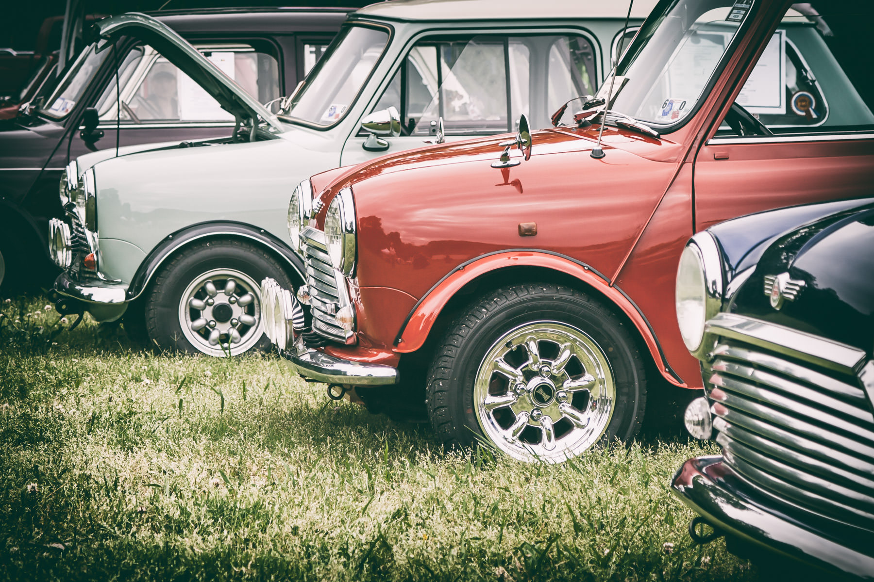 Classic Austin Minis at Dallas' All British and European Car Day.