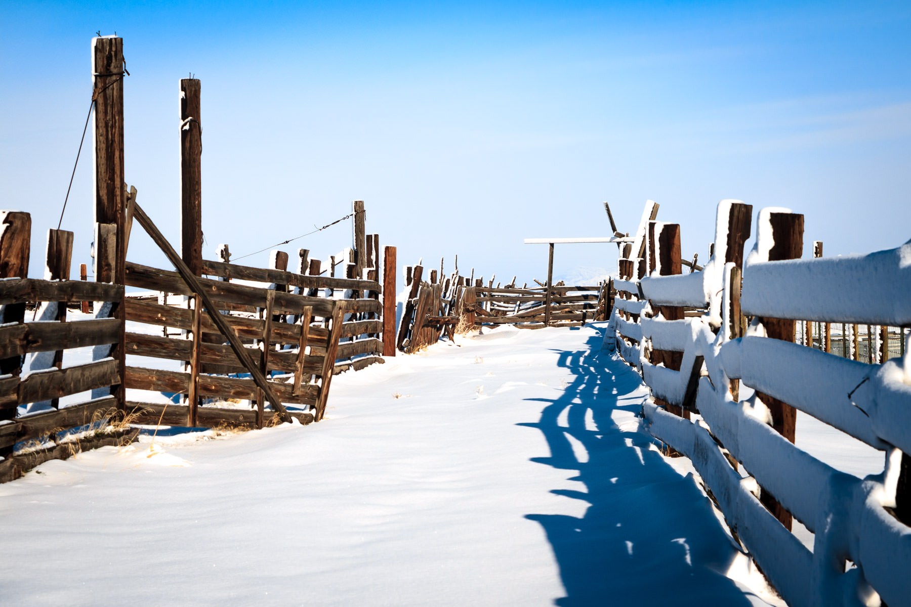 A very cold and snowy fence at Utah's Antelope Island State Park.