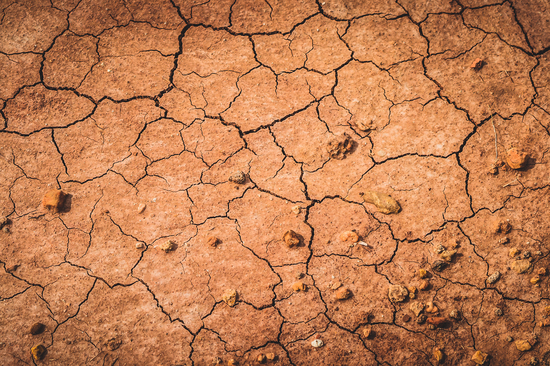 Dried mud in Palo Duro Canyon, Texas.
