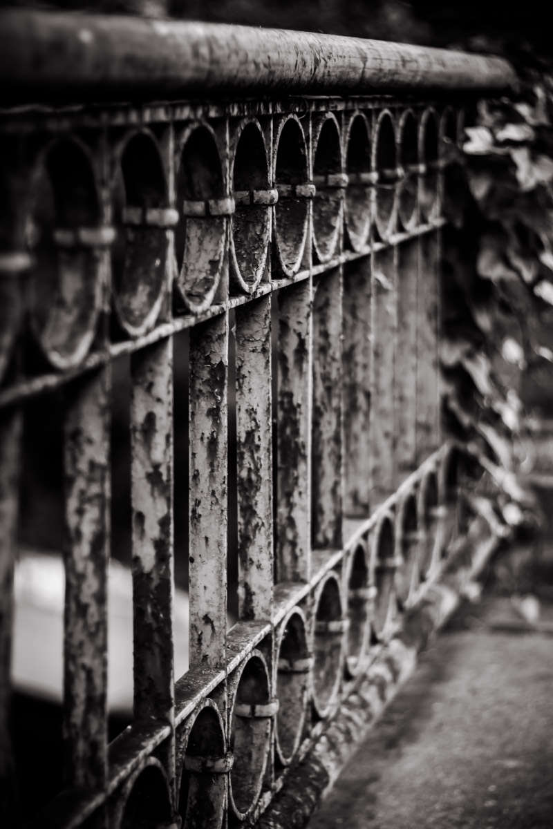 A rusting iron railing on a bridge over Turtle Creek in Uptown Dallas.