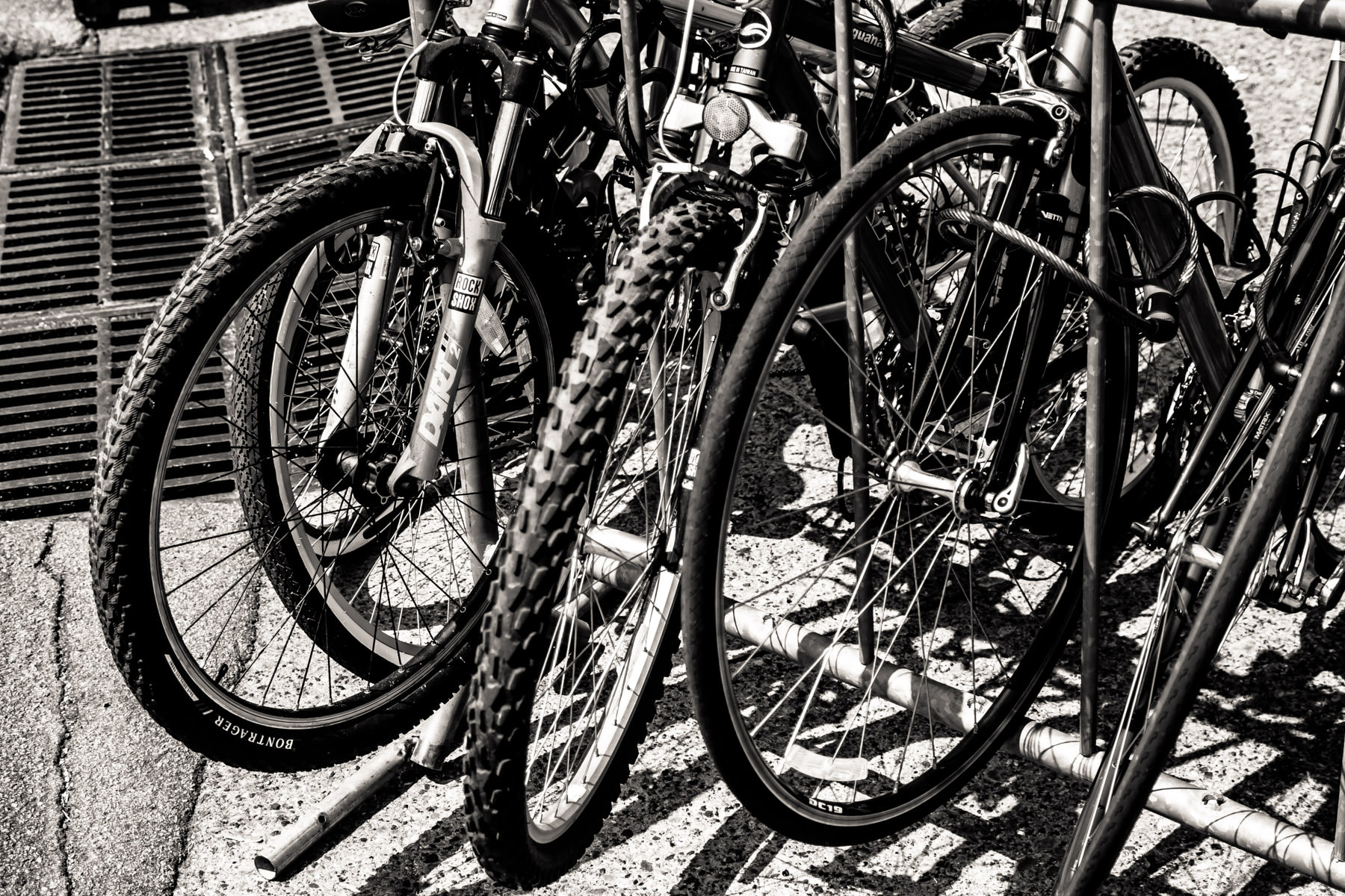 Bikes parked outside of a business in Oak Cliff, Dallas.