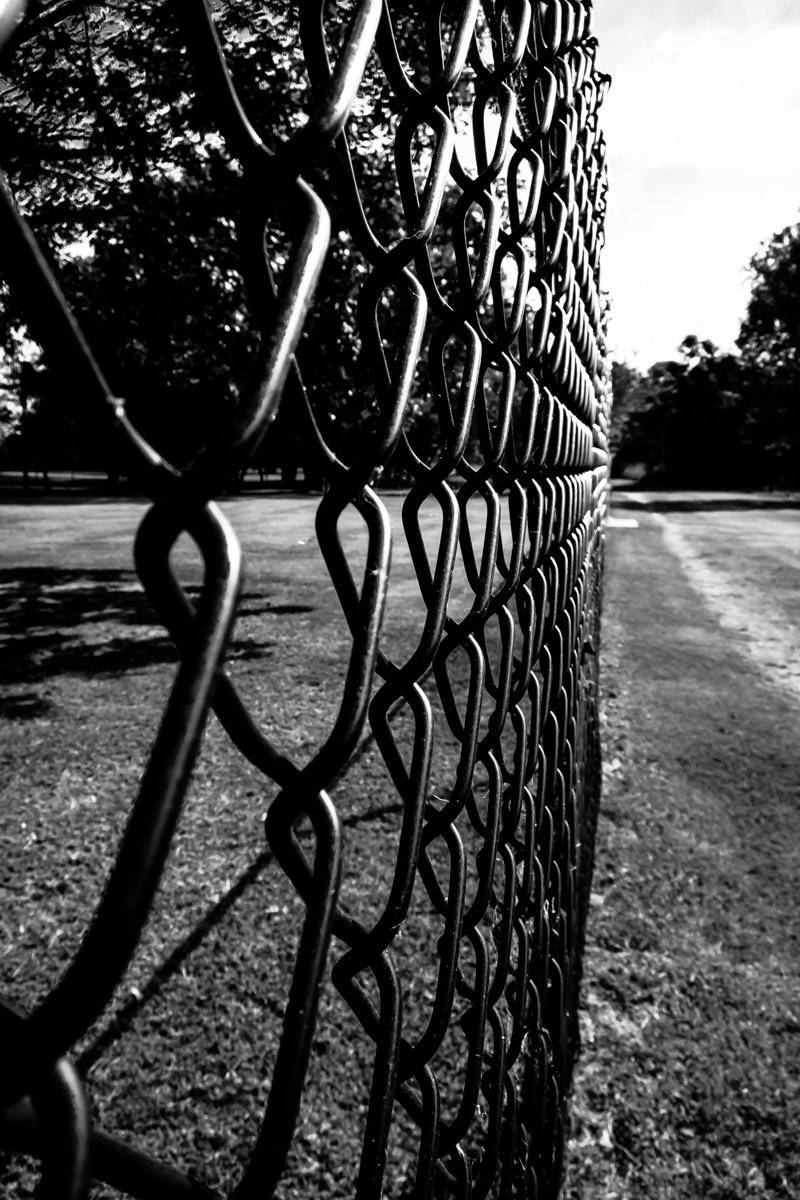 A chain link fence at White Rock Lake Park, Dallas.