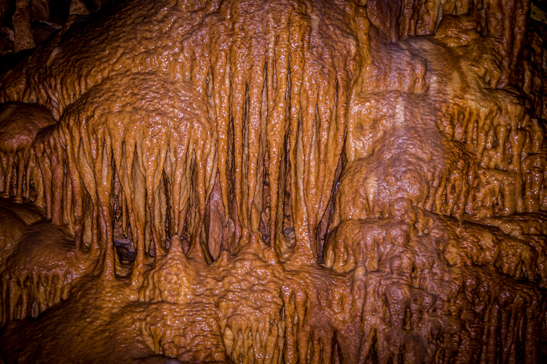 Detail of rock formations from Inner Space Cavern, Georgetown, Texas.