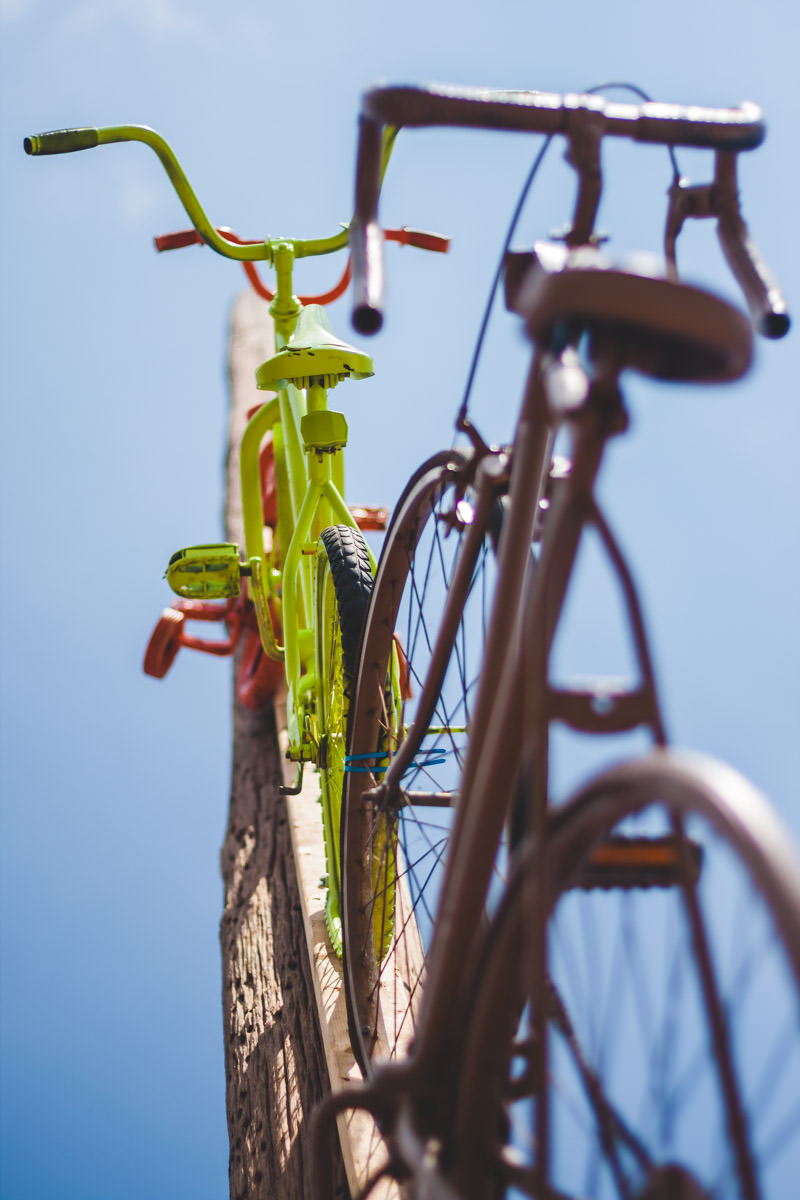 Bicycles mounted on a telephone pole in Oak Cliff, Dallas.