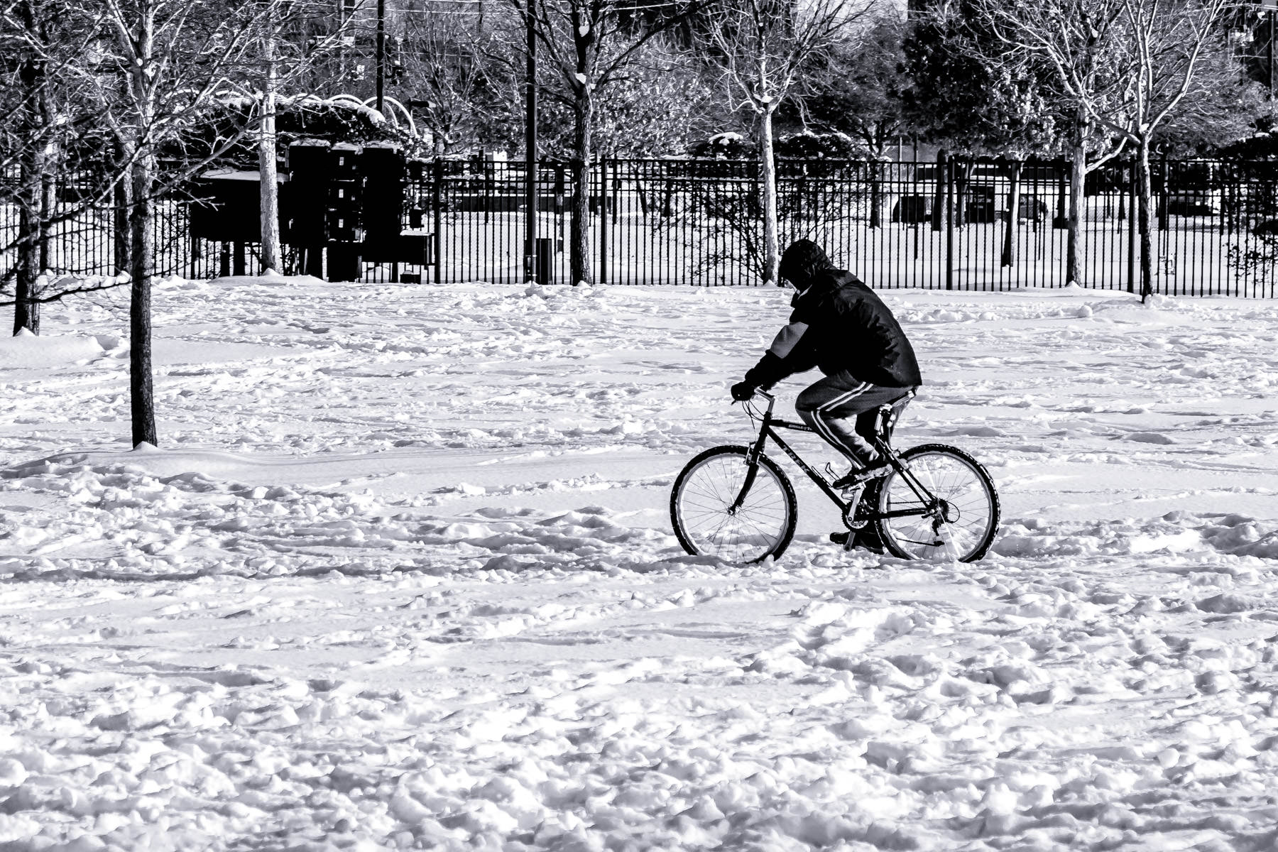 A bicyclist crosses Addison Circle Park in Addison, Texas, after a snowfall.