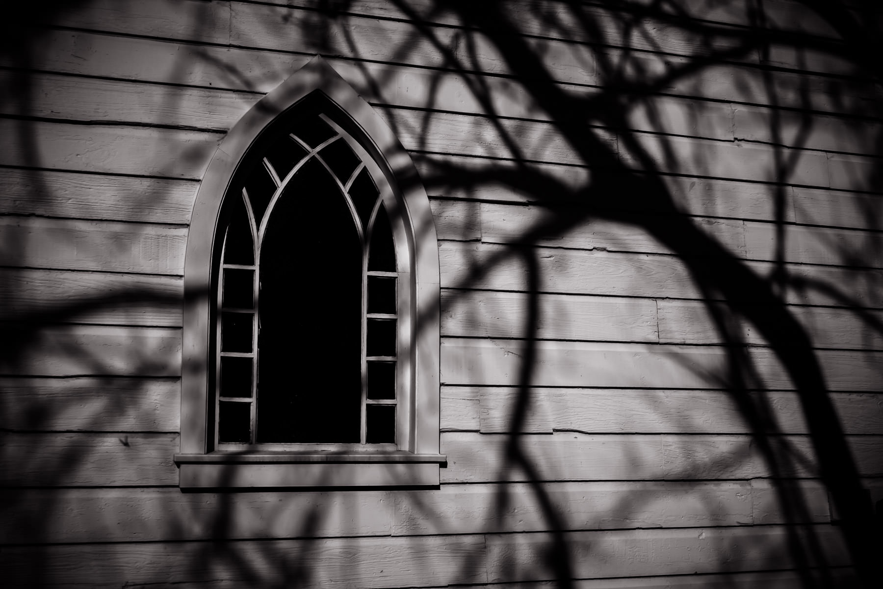 Shadows of tree branches fall over a window of an abandoned church somewhere near Dallas.