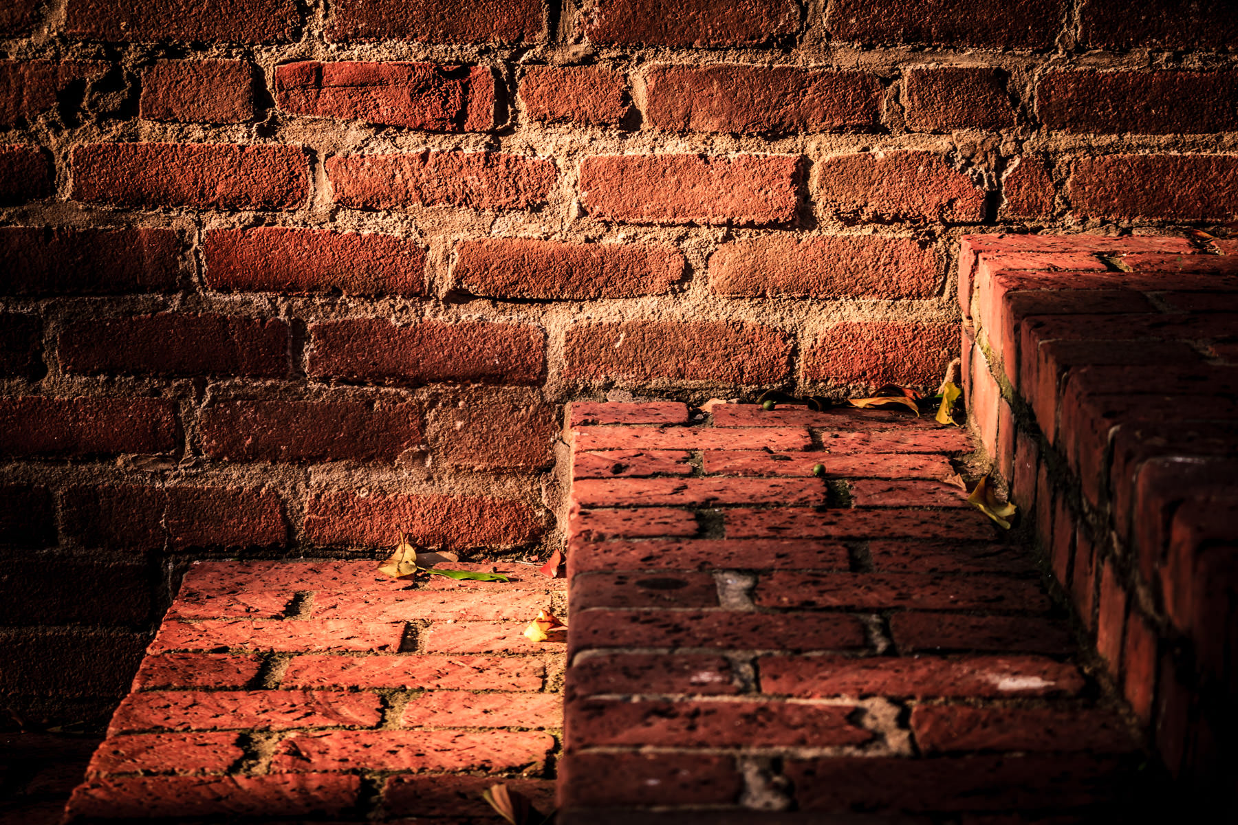 Red brick steps on the campus of Tyler Junior College, Tyler, Texas.