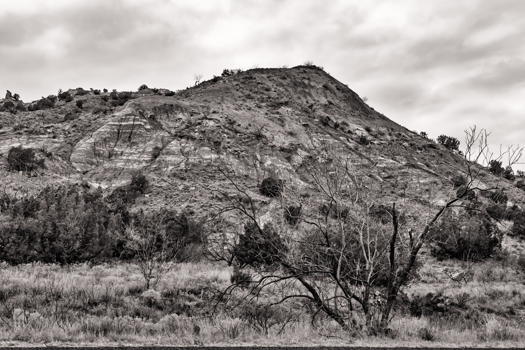Storm clouds move in over Palo Duro Canyon, Texas.