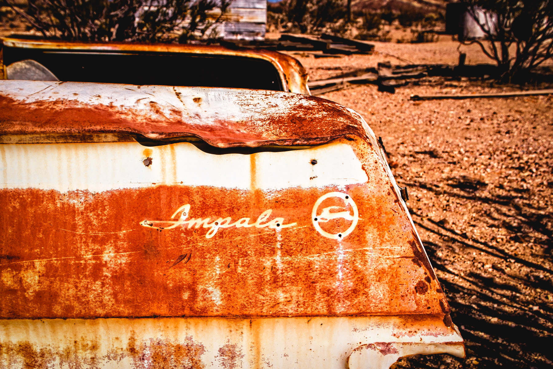 Detail of an abandoned Chevrolet Impala, Rhyolite, Nevada.