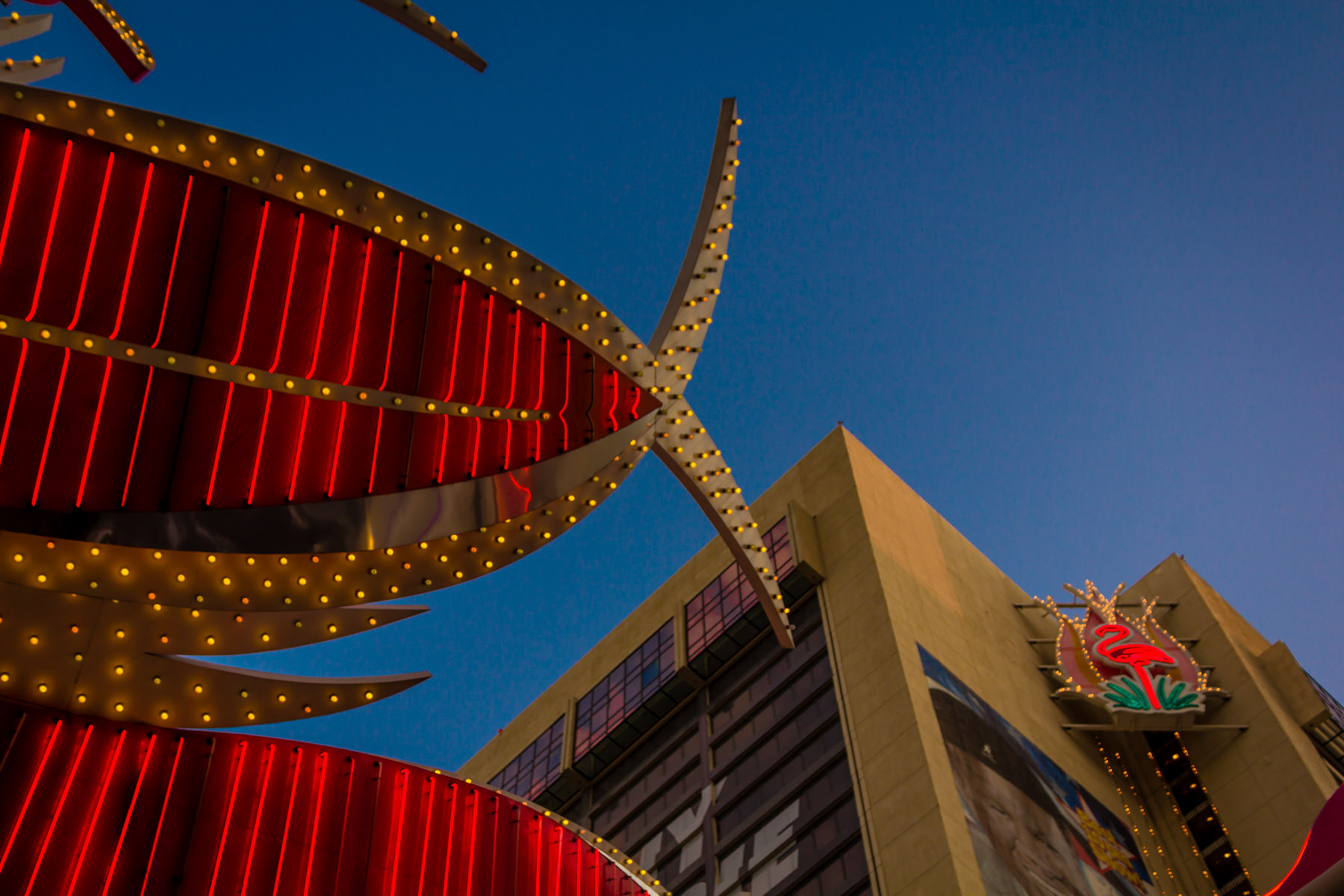 Detail of signage on the Flamingo Hotel & Casino, Las Vegas.