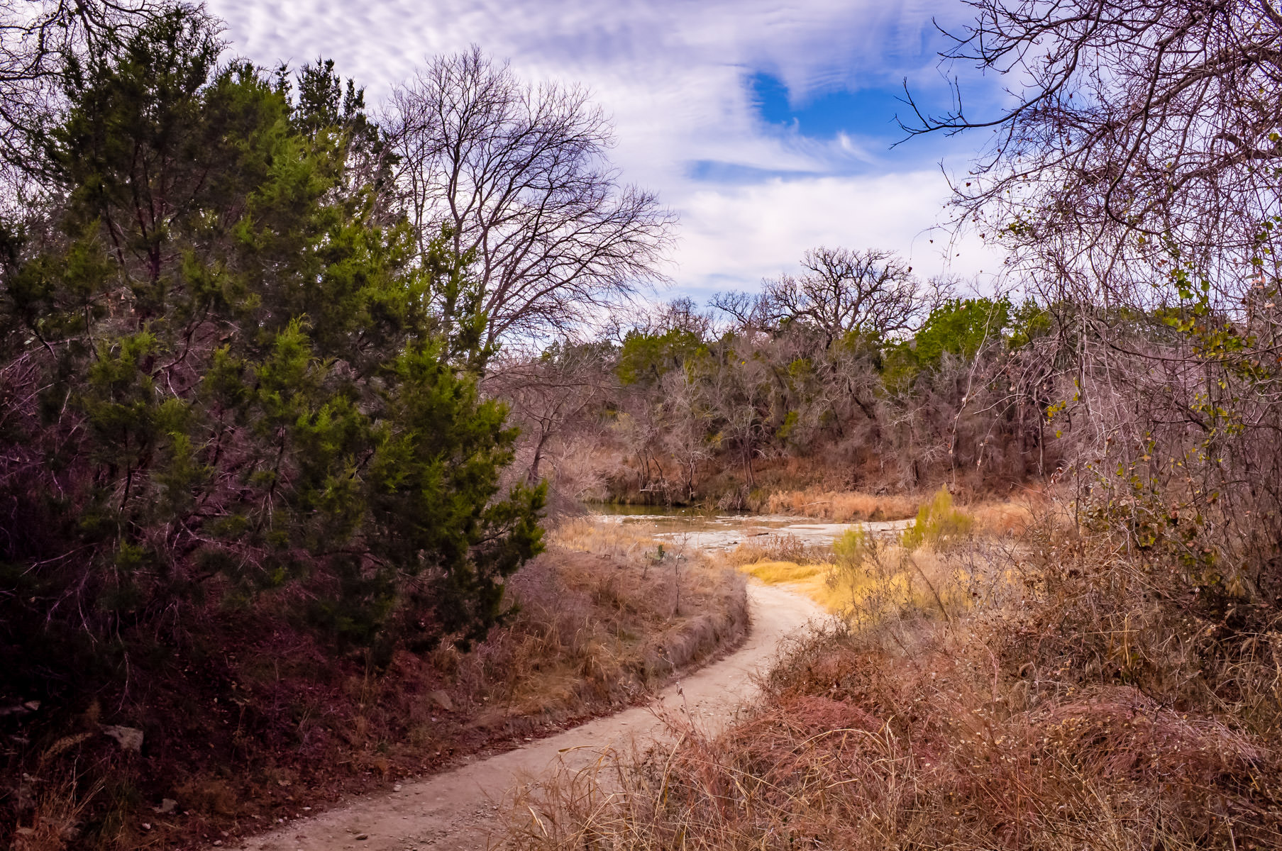 A path leads to the Paluxy River, Dinosaur Valley State Park, Texas.